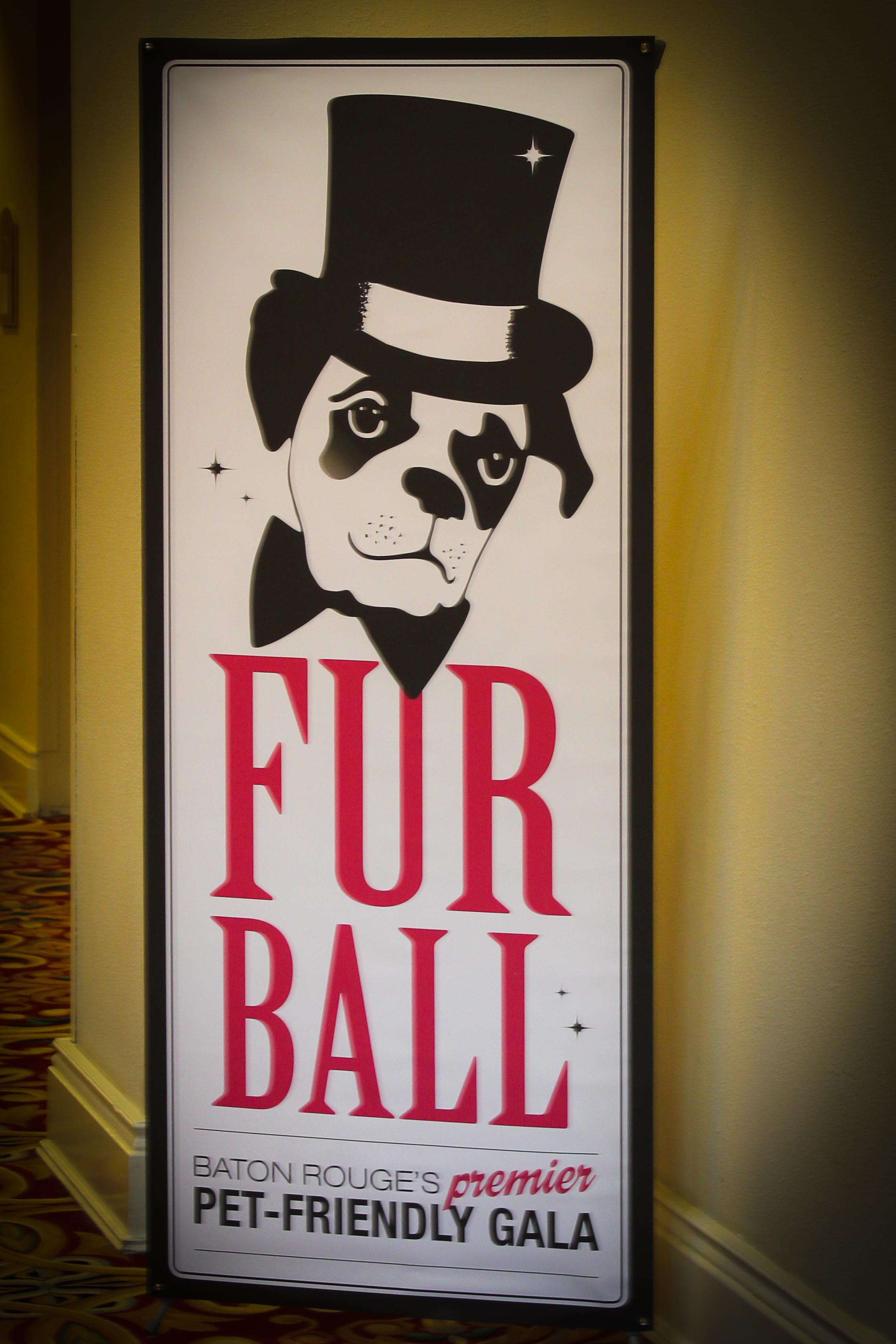 Fur Ball 2012-1.jpg