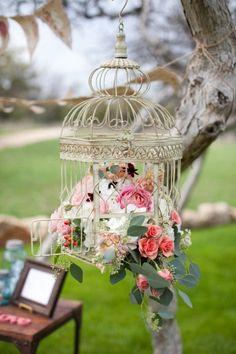 Assorted Birdcage