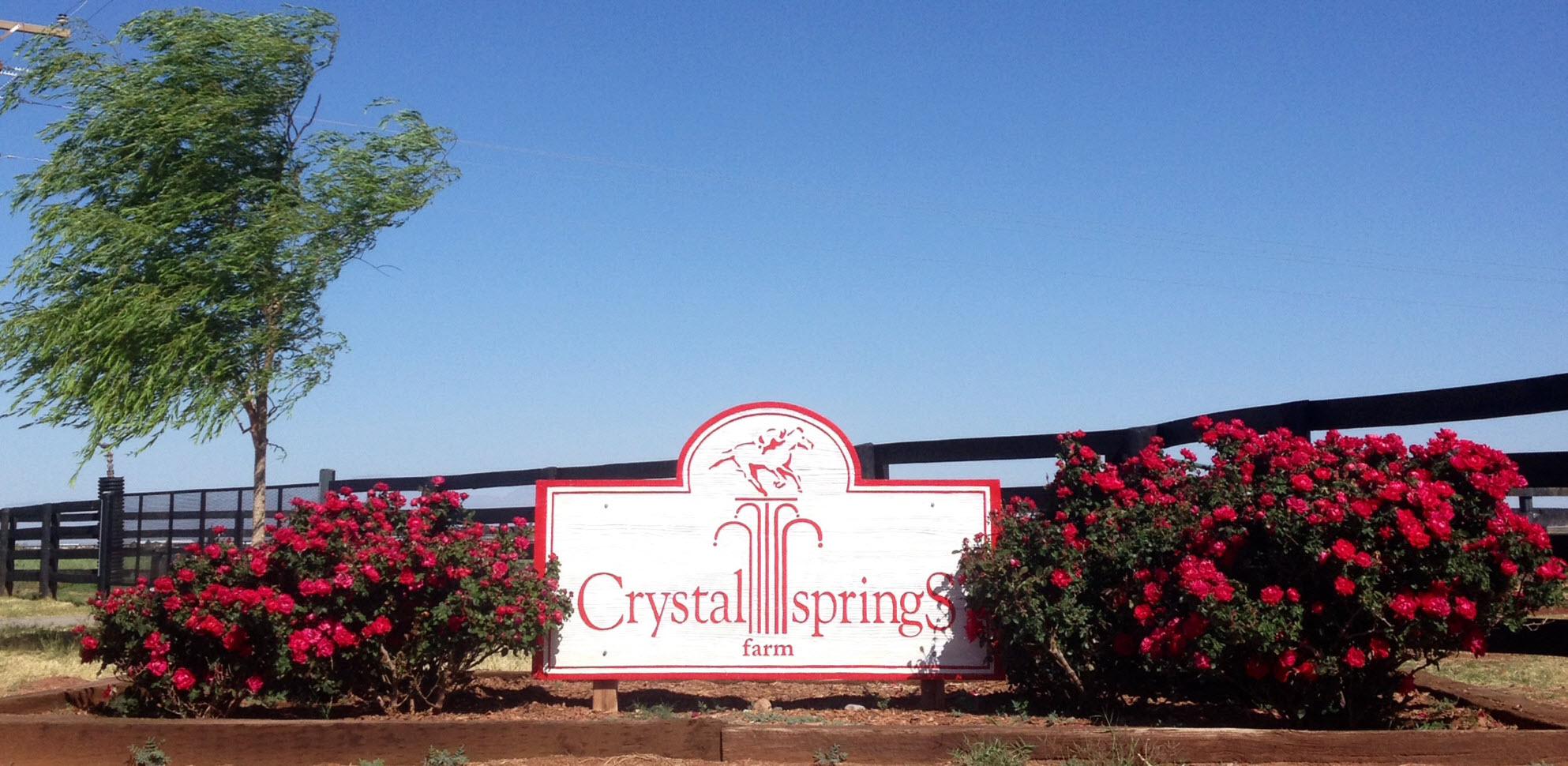 crystal springs roses small.jpg