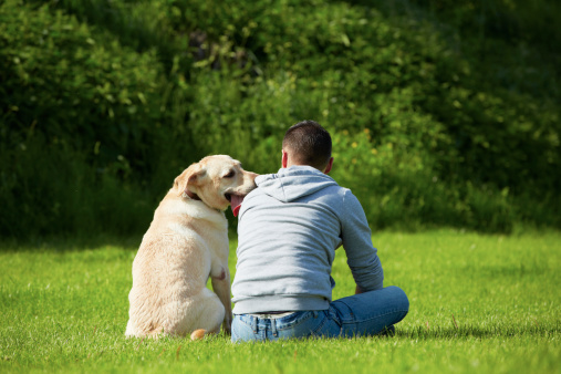 Luxury-Rehab-Centers-Pets-Welcomed