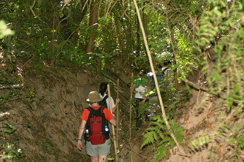 Adventure Therapy - Hiking through the Jungle!