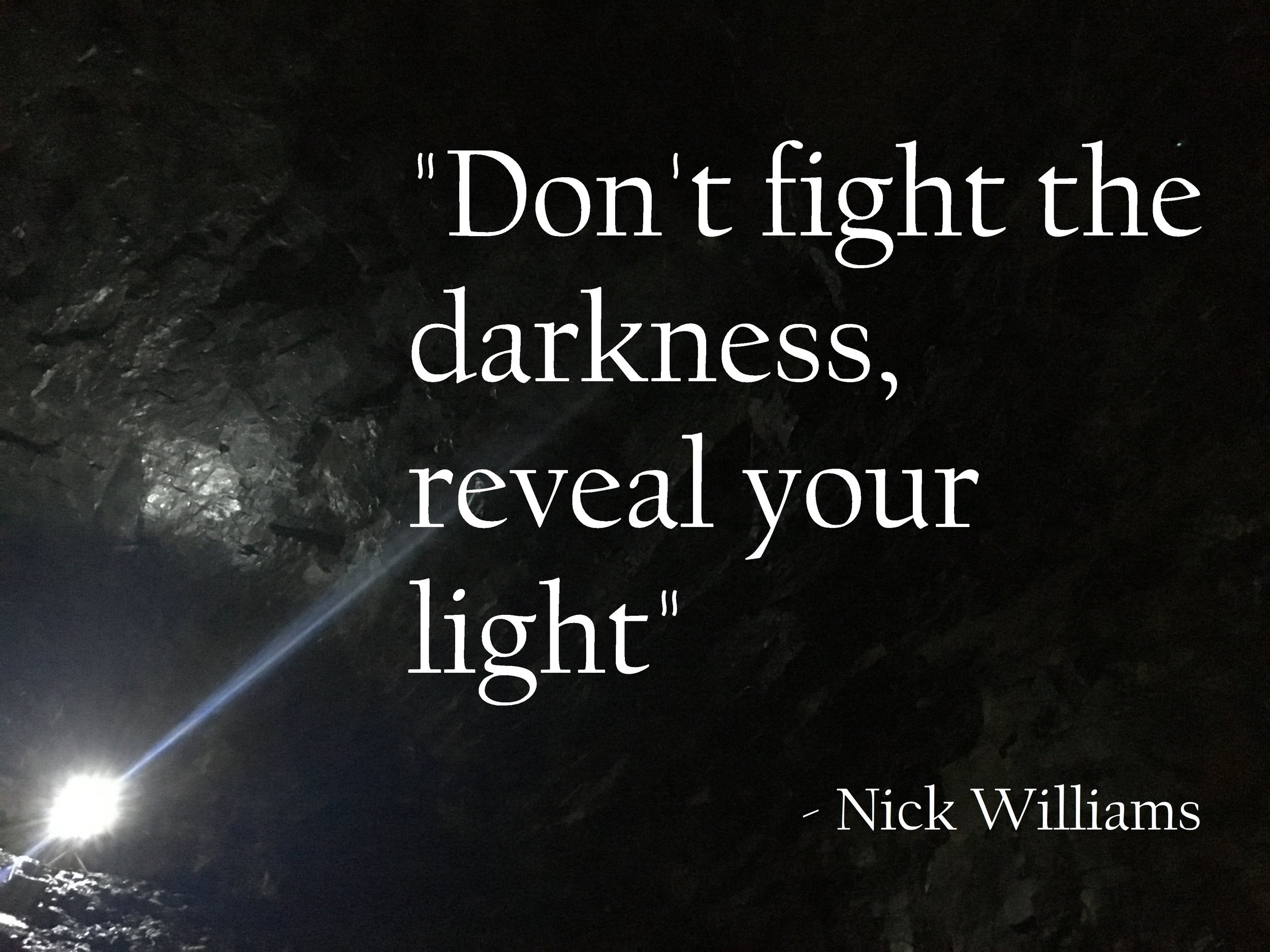 Don't fight the darkness reveal your light - nick williams.jpg