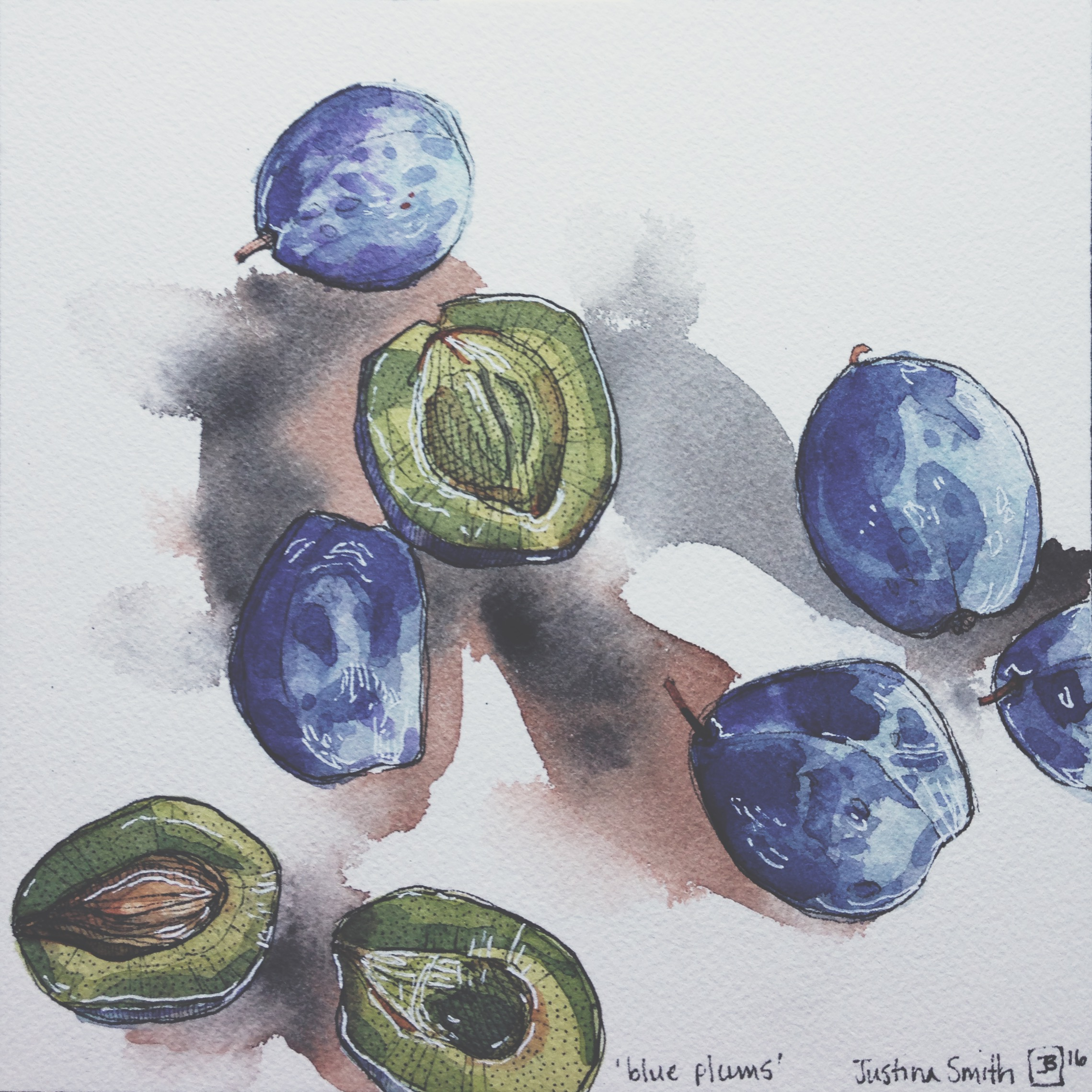 blue plums, pen & watercolour on cold pressed paper, 8x8(in), $100 + GST, 2016