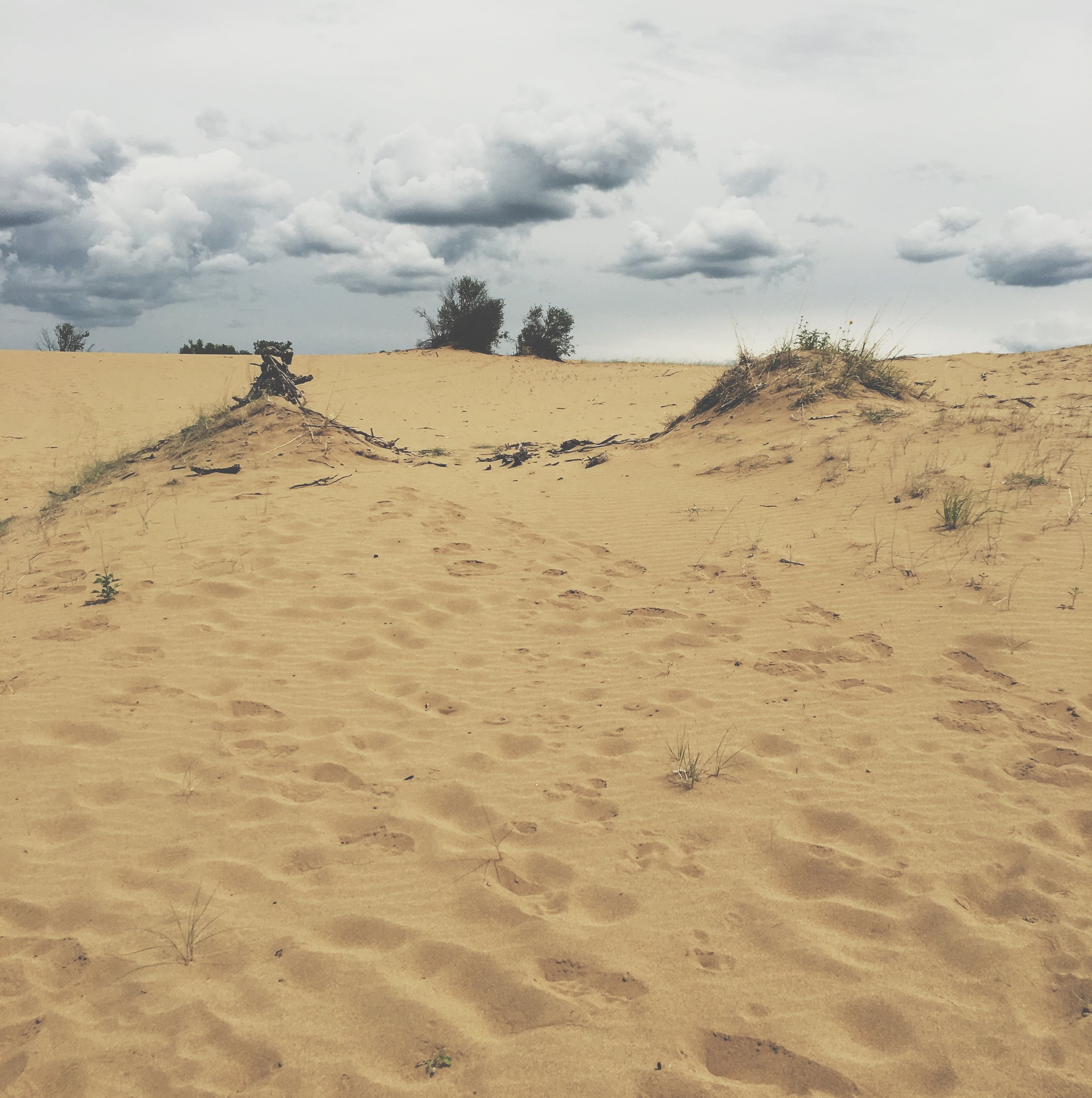 making my way up the 'path' to the head of the dune. this photo does not show clearly how steep the sandy climb actually was.