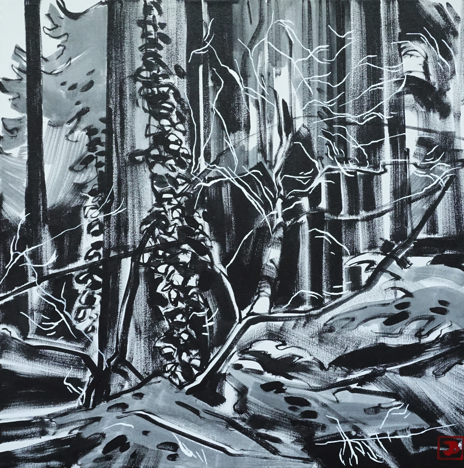 forest interior, vancouver bc,  acrylic on canvas, 16x16(in), $510 + GST,  2019