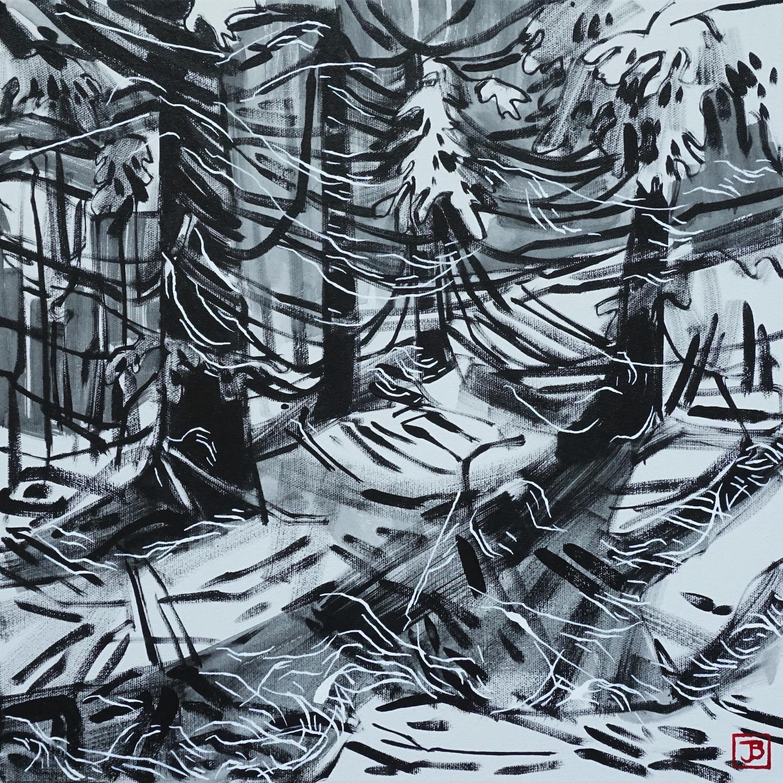 sweeping cedars, vandusen botanical garden, vancouver bc,  acrylic on canvas, 16x16(in), $510 + GST,  2019