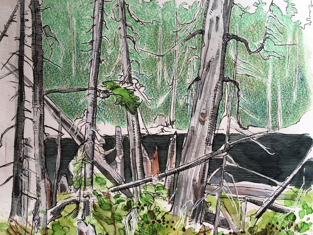detail of spirit lake sketch