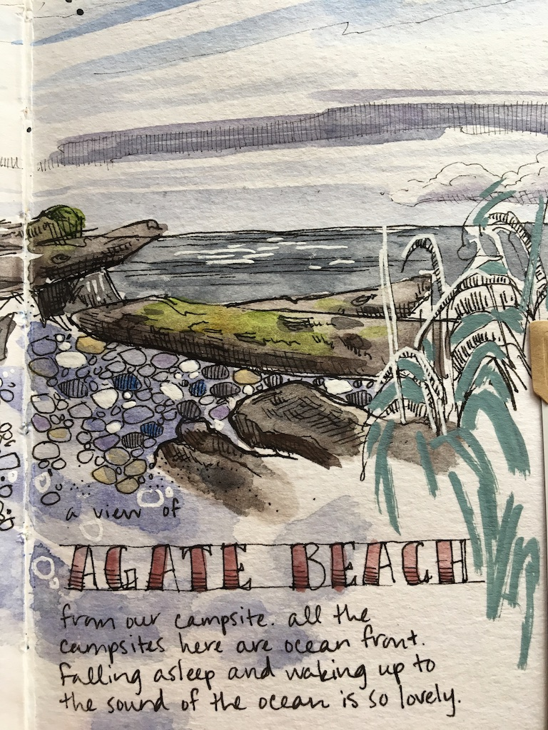 detail of second page of agate beach tree sketch