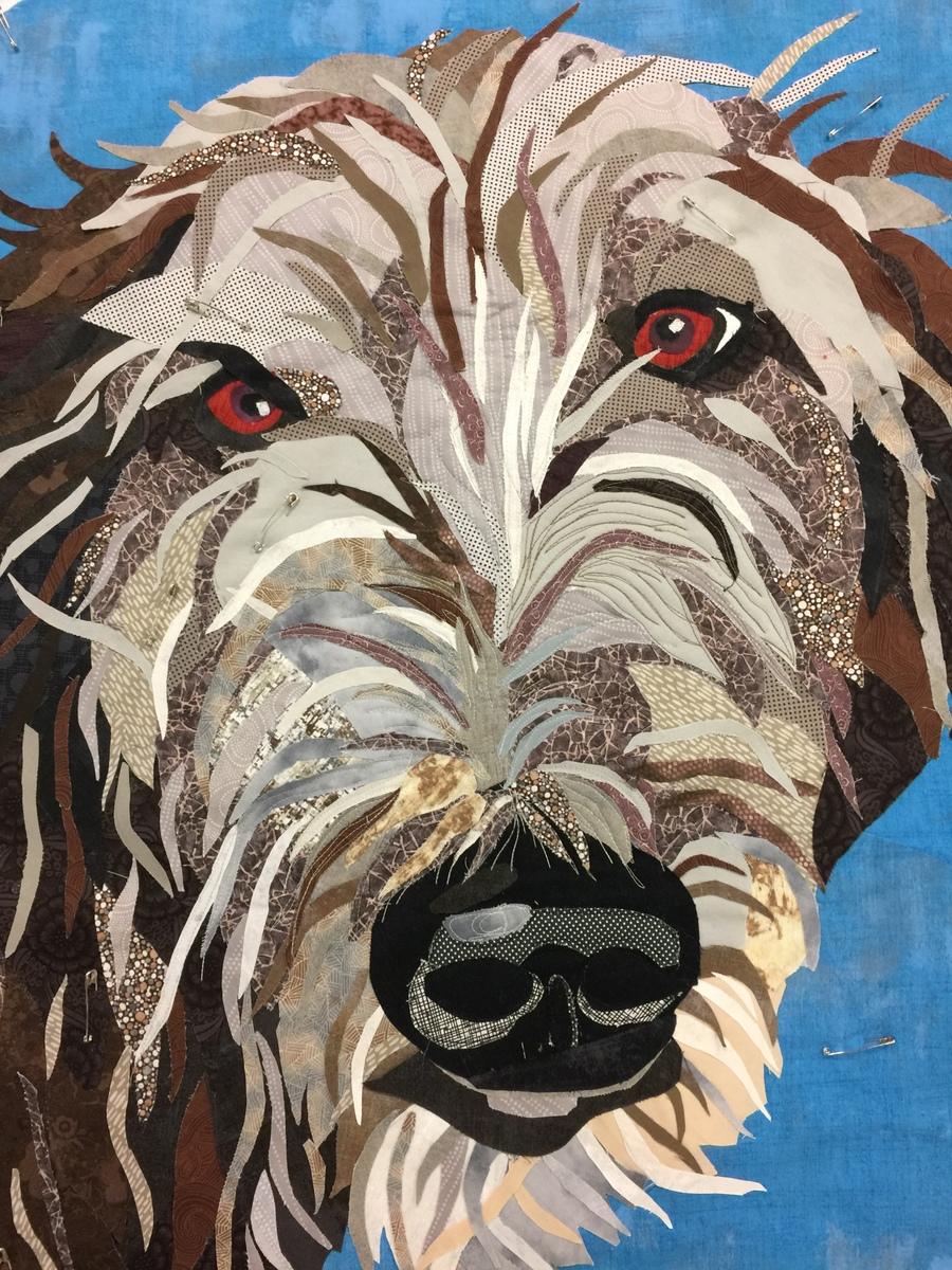 Arthur the Irish Wolfhound Mix