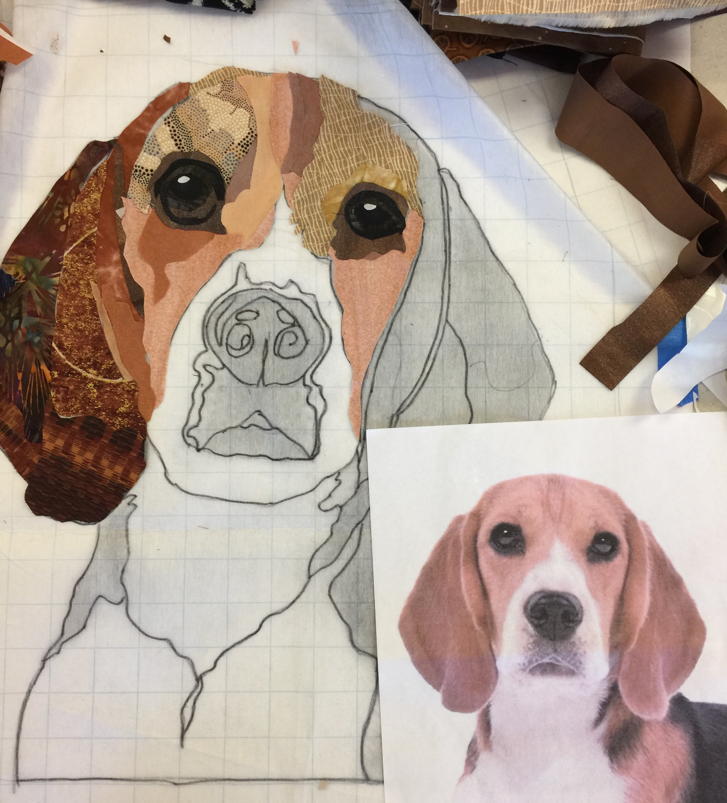 Love the progress of this Beagle