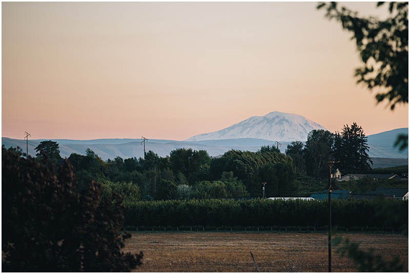 2014-08-29_0039.jpg