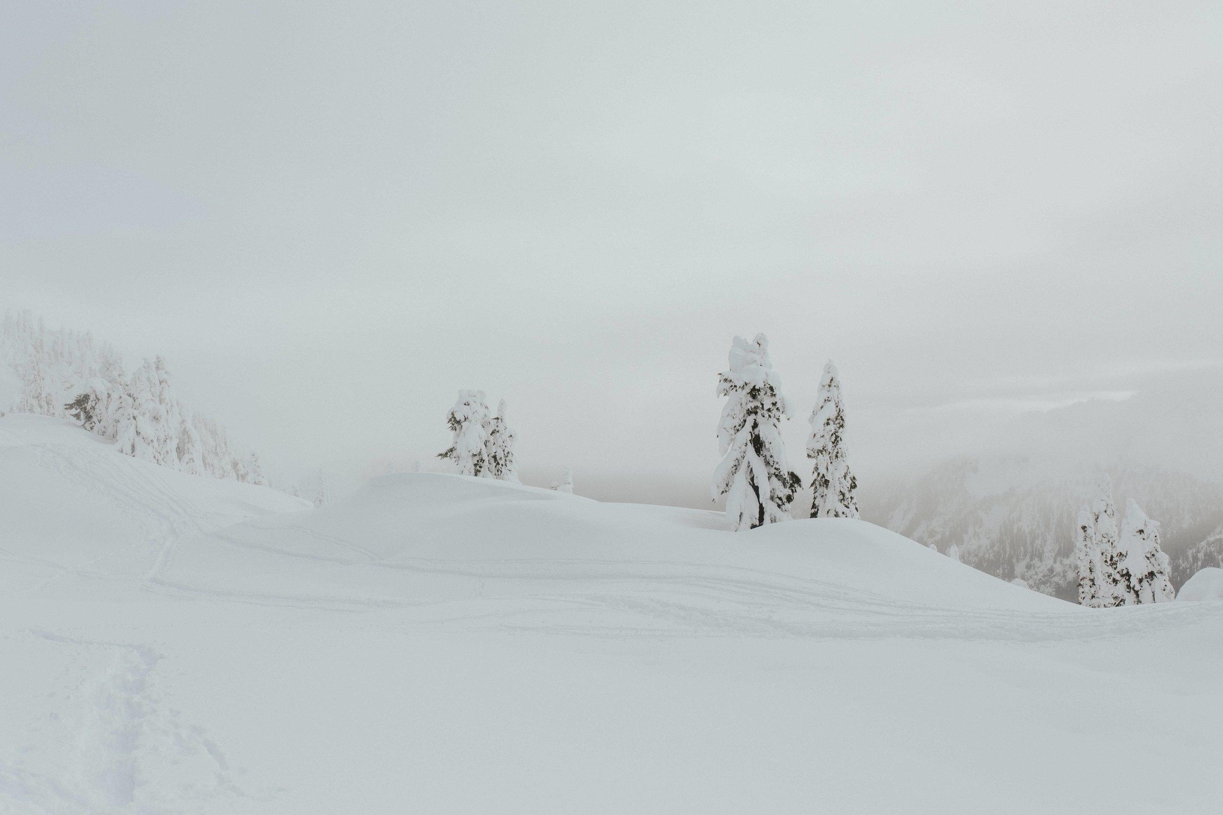 adventure-wedding-photographer-artist-point-snow-camping-elopement-photographer.jpg