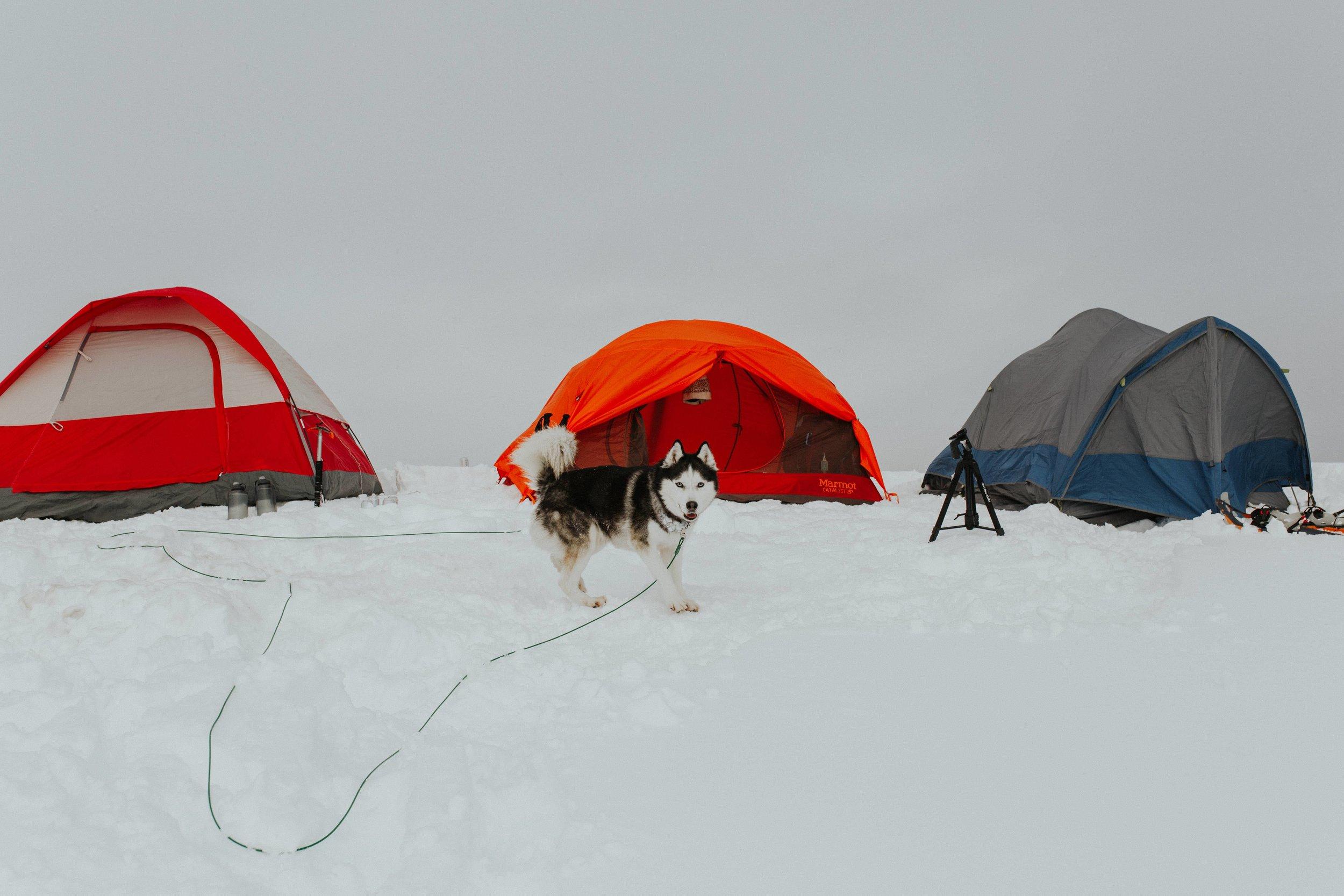 adventure-wedding-photographer-artist-point-snow-camping-elopement-photographer-mount-baker-photographer.jpg