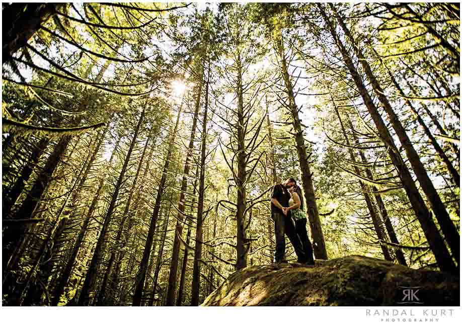 An Engagement Session in the Forest