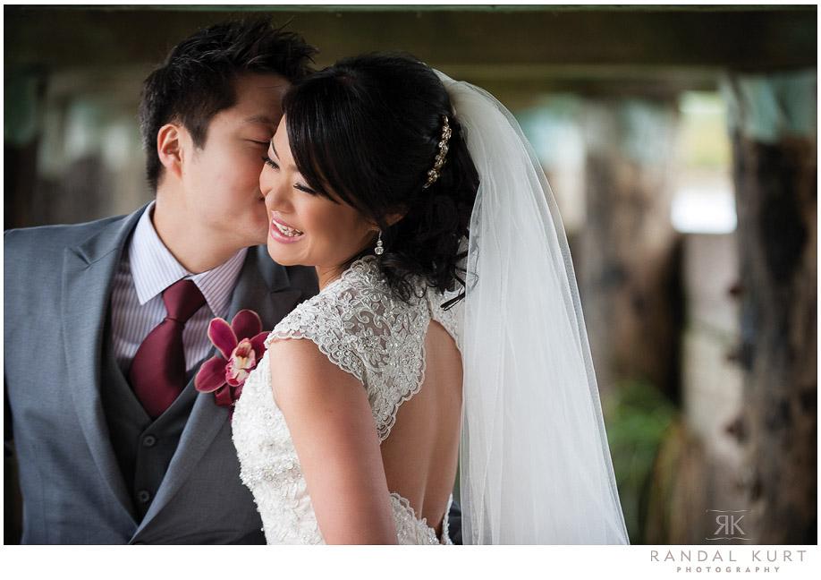 Wedding Photography at Dr Sun Yat Sen Gardens with reception at Sun Sui Wah Restaurant