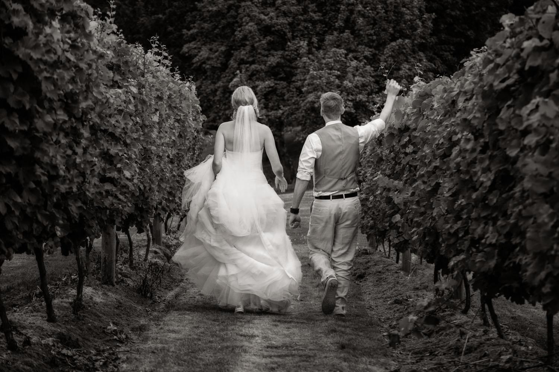 mt-lehman-wedding.jpg