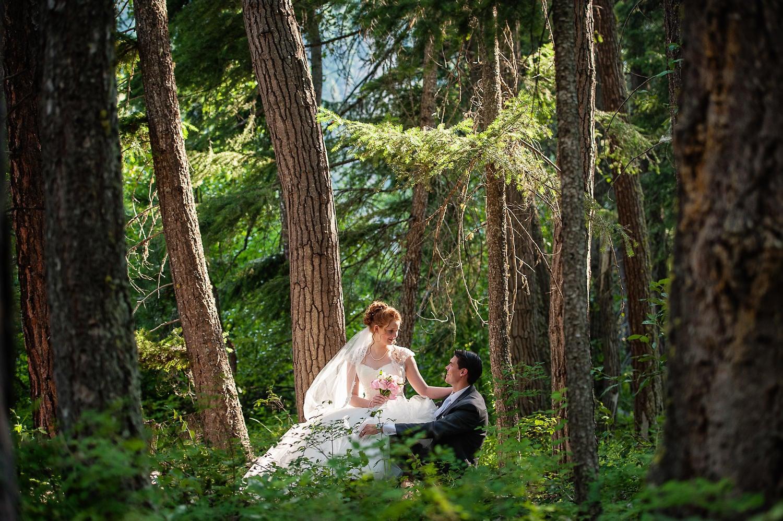 15-romantic-forest.jpg