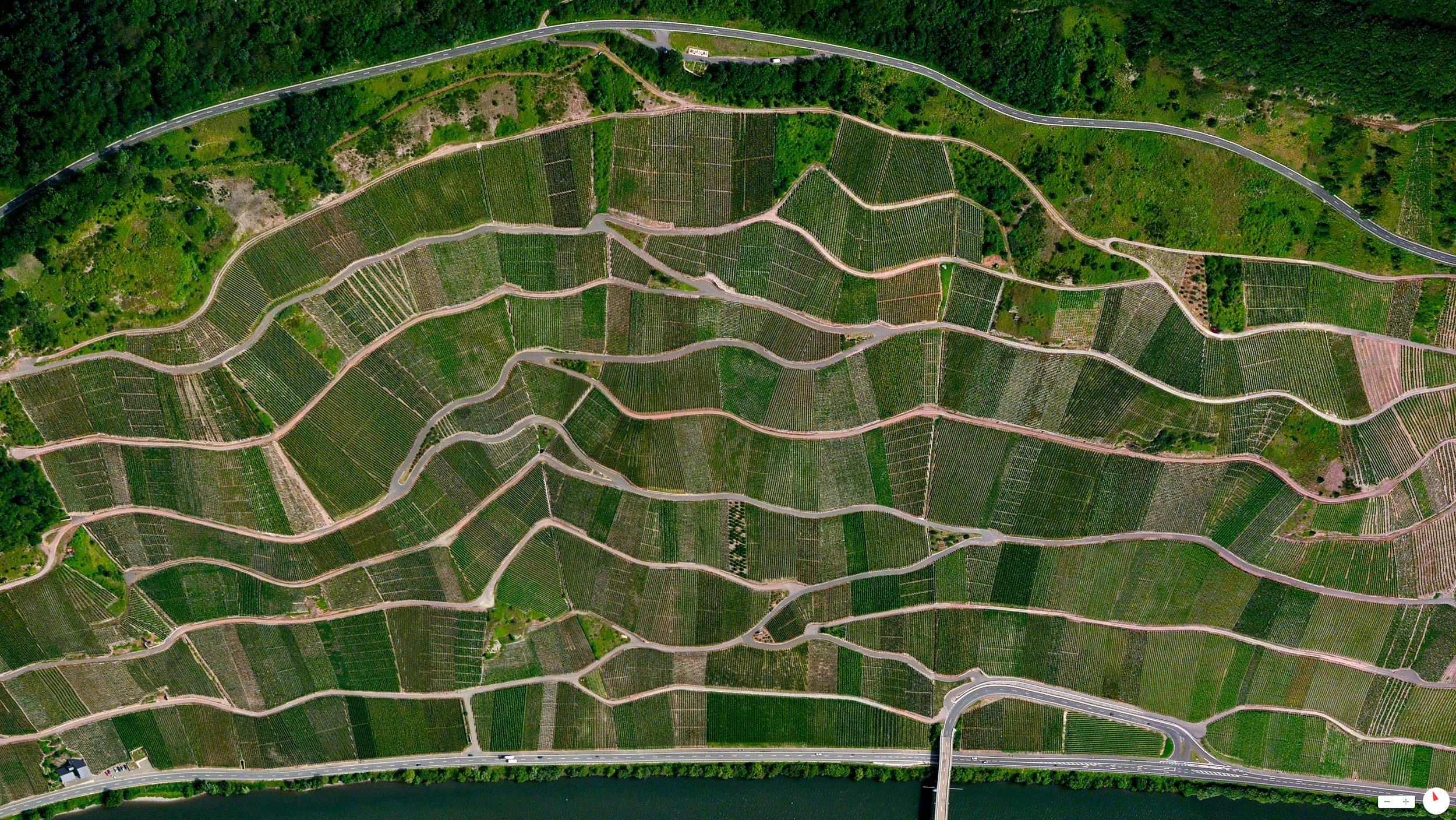 2/1/2014    Step vineyards  along the  Moselle River   Ürzig, Germany     49°58′56″N 07°00′19″E