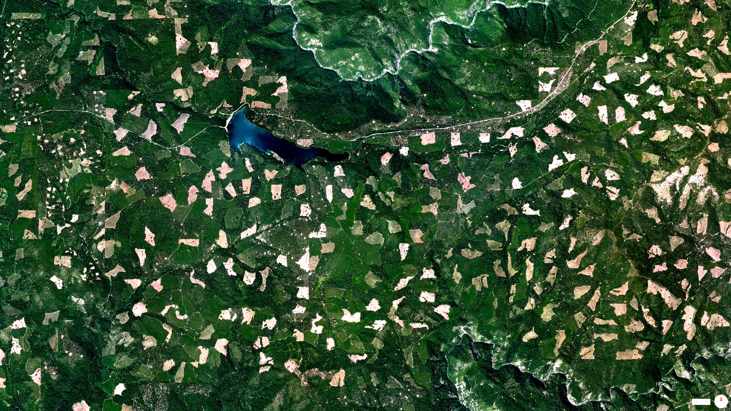 6/11/2014    Clearcutting in the El Dorado National Forest   Georgetown, California, USA   38°45′01″N 120°20′00″