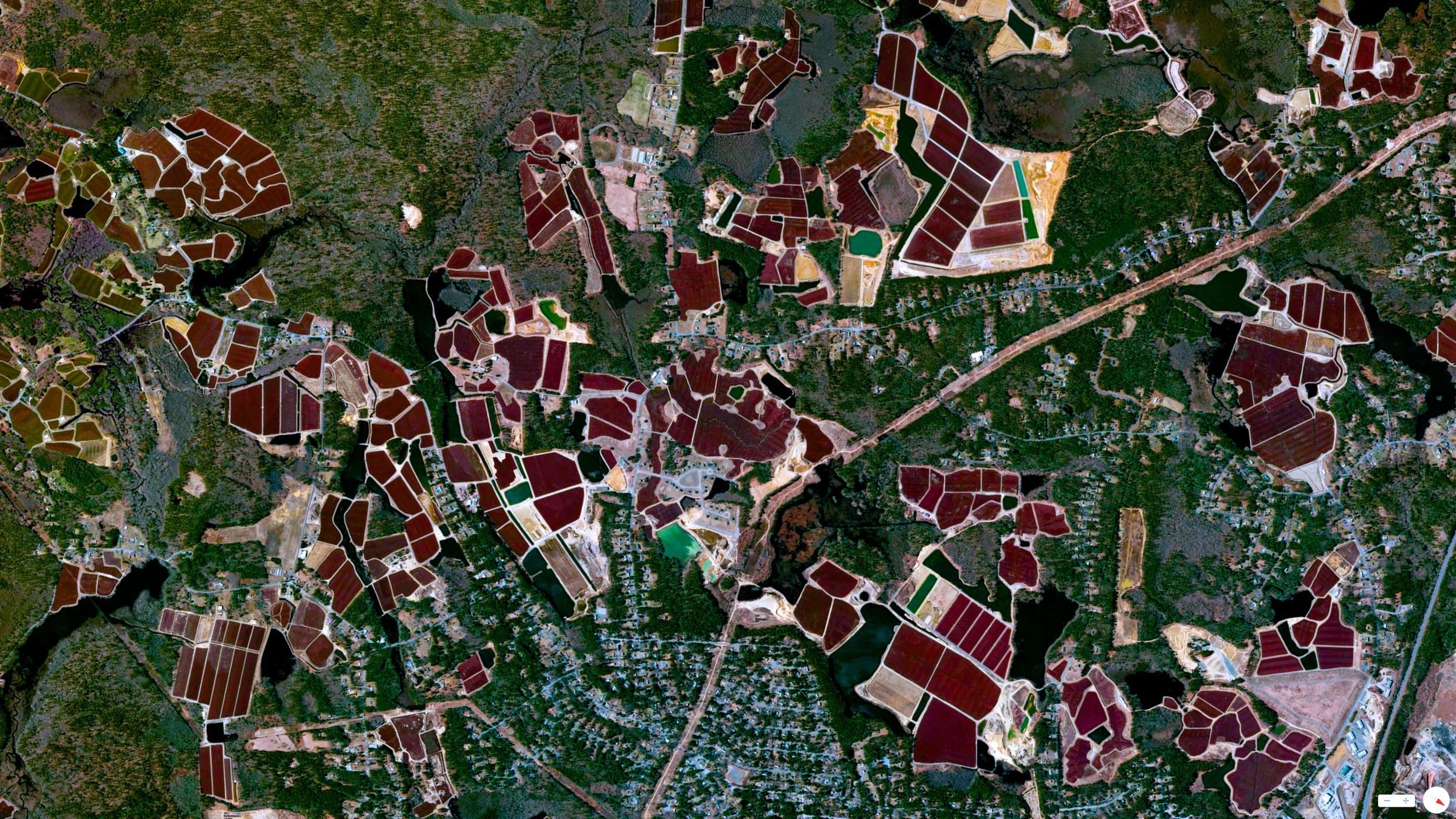 6/17/2014    Cranberry Bogs   Carver, Massachusetts, USA     41°53′00″N 70°45′47″W
