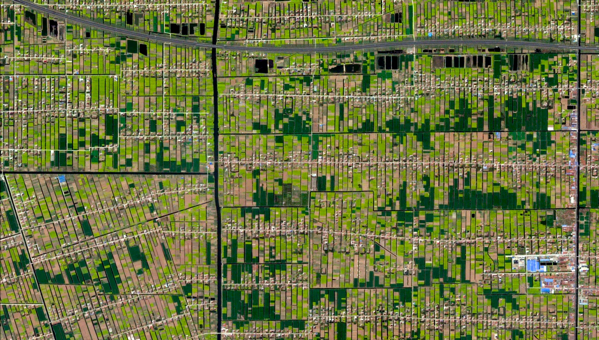 5/11/2015  Residential / agricultural development   Jiulongzhen, Anhui, China   31.887639391°, 121.646788019°      Individual homes and agricultural lots stretch across the landscape of Jiulongzhen in the Anhui Province of China.