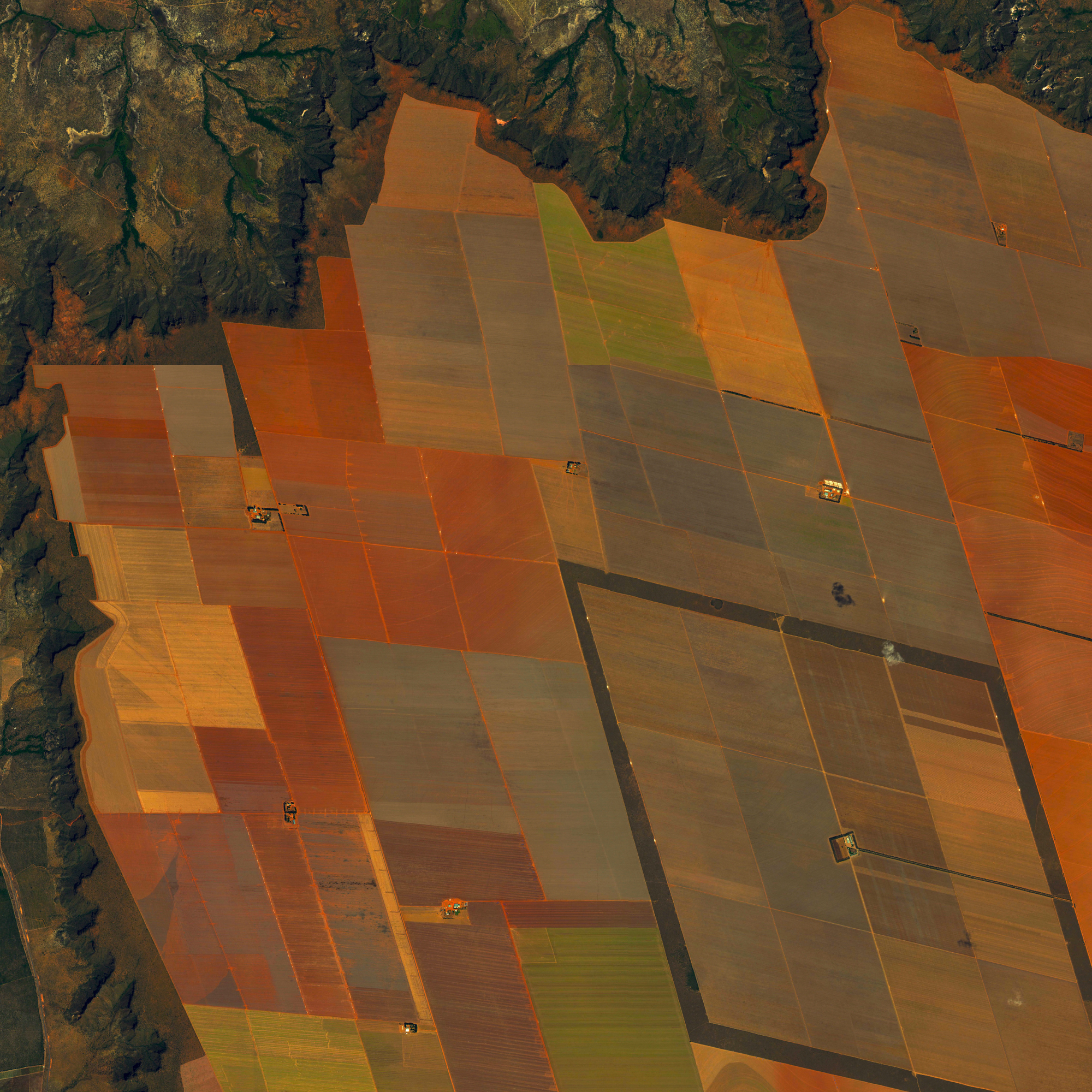 7/6/2015   Soybean fields   São Domingos, Brazil / São Desidério, Brazil  12°22′S 44°58′W    Soybeans fields straddle the border of São Domingos and São Desidério, Brazil. In 2014, Brazil became the world's top producer of the crop with a harvest of 90 million metric tons.