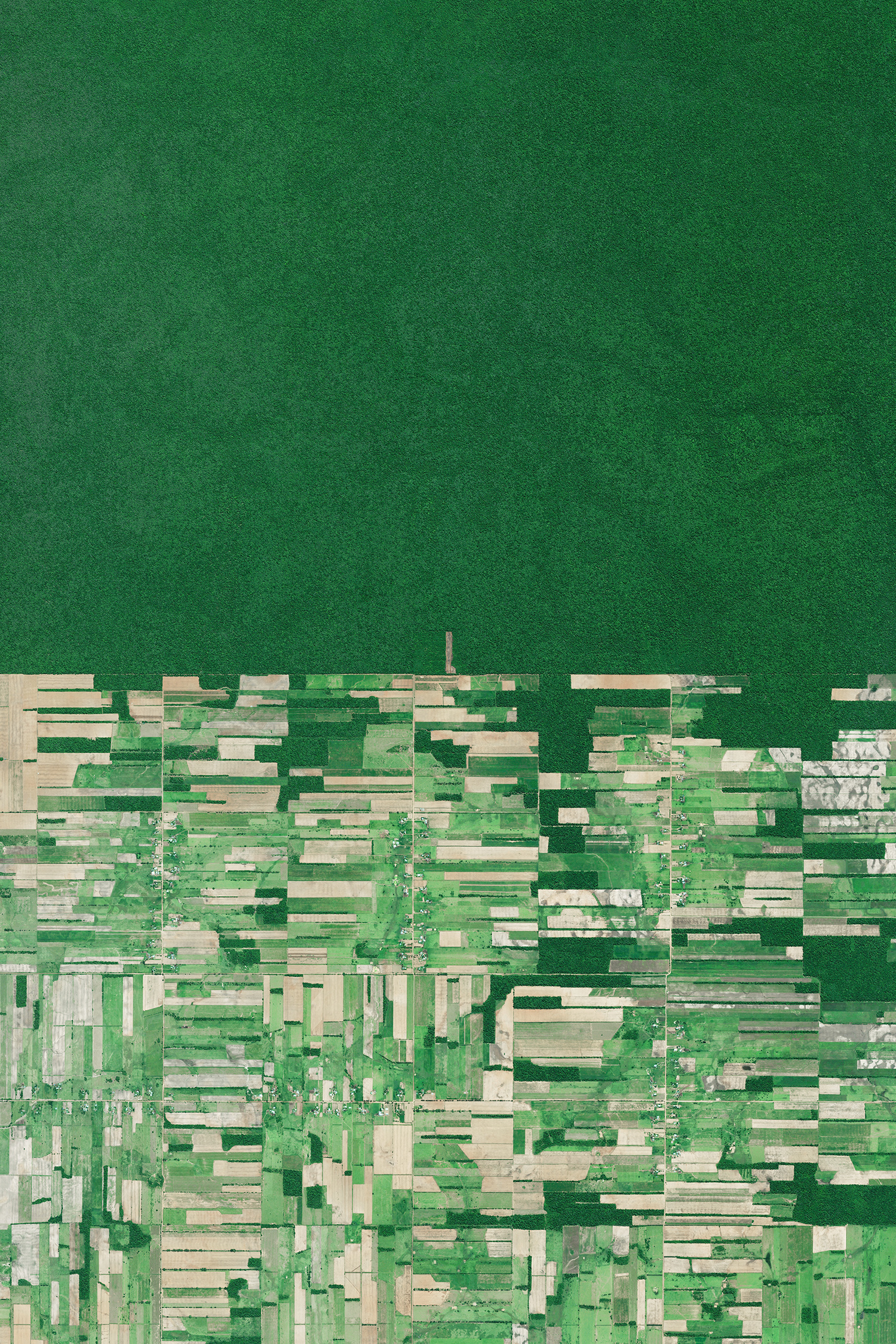 """Deforestation in Bolivia has primarily been driven by the expansion of mechanized agriculture and cattle ranching. It is seen here in Santa Cruz, immediately adjacent to untouched tracts of forest. While tree-clearing rates are now relatively stable at about 200,000 hectares (494,000 acres) a year, it is estimated that Bolivia lost 1,820,000 hectares (4.5 million acres) of forests from 2000 to 2010. Since today is Arbor Day, we hope this Overview will inspire you to plant a tree and help preserve the natural beauty of our one and only home.  17°23'15.7""""S, 60°33'43.6""""W  Source imagery: DigitalGlobe"""