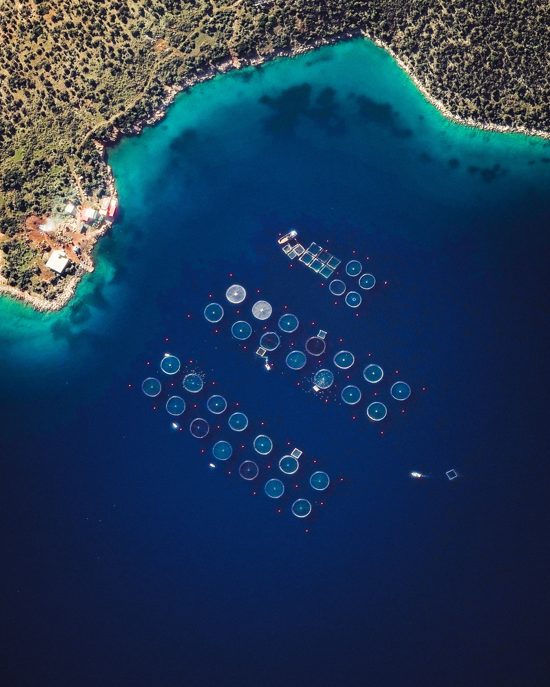 """Check out this Overview, which shows a fish farming operation in the Saronic Gulf, just off the eastern tip of Greece's Peloponnese peninsula. Fish farming — or pisciculture — involves raising fish in tanks or enclosures, usually for food. In 2015, Greece had at least 300 of these farms and raised more than 242 million pounds (109 million kg) of fish and mussels.  37°36'34.5""""N, 23°19'04.0""""E  Source imagery: DigitalGlobe"""