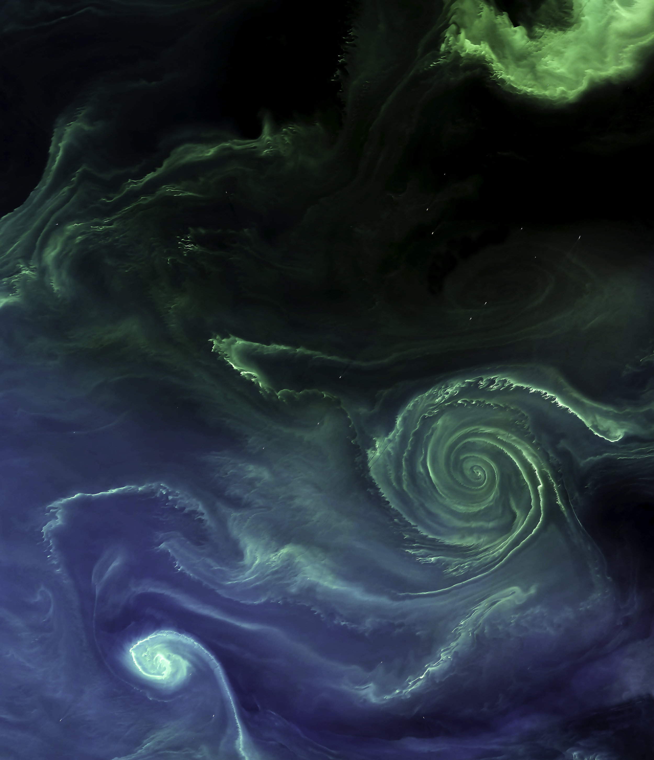 """Last month, the Operational Land Imager (OLI) on Landsat 8 captured this amazing Overview of a swirling green phytoplankton bloom in the Baltic Sea. Blooms like this spread across the northern basins of the North Atlantic and Arctic Oceans every summer, often spanning hundreds and sometimes thousands of miles. Scientists believe these blooms to be cyanobacteria, or blue-green algae — an ancient marine bacteria that captures and stores solar energy through photosynthesis.  59°31'40.0""""N, 23°21'23.0""""E  Source imagery: NASA - National Aeronautics and Space Administration"""