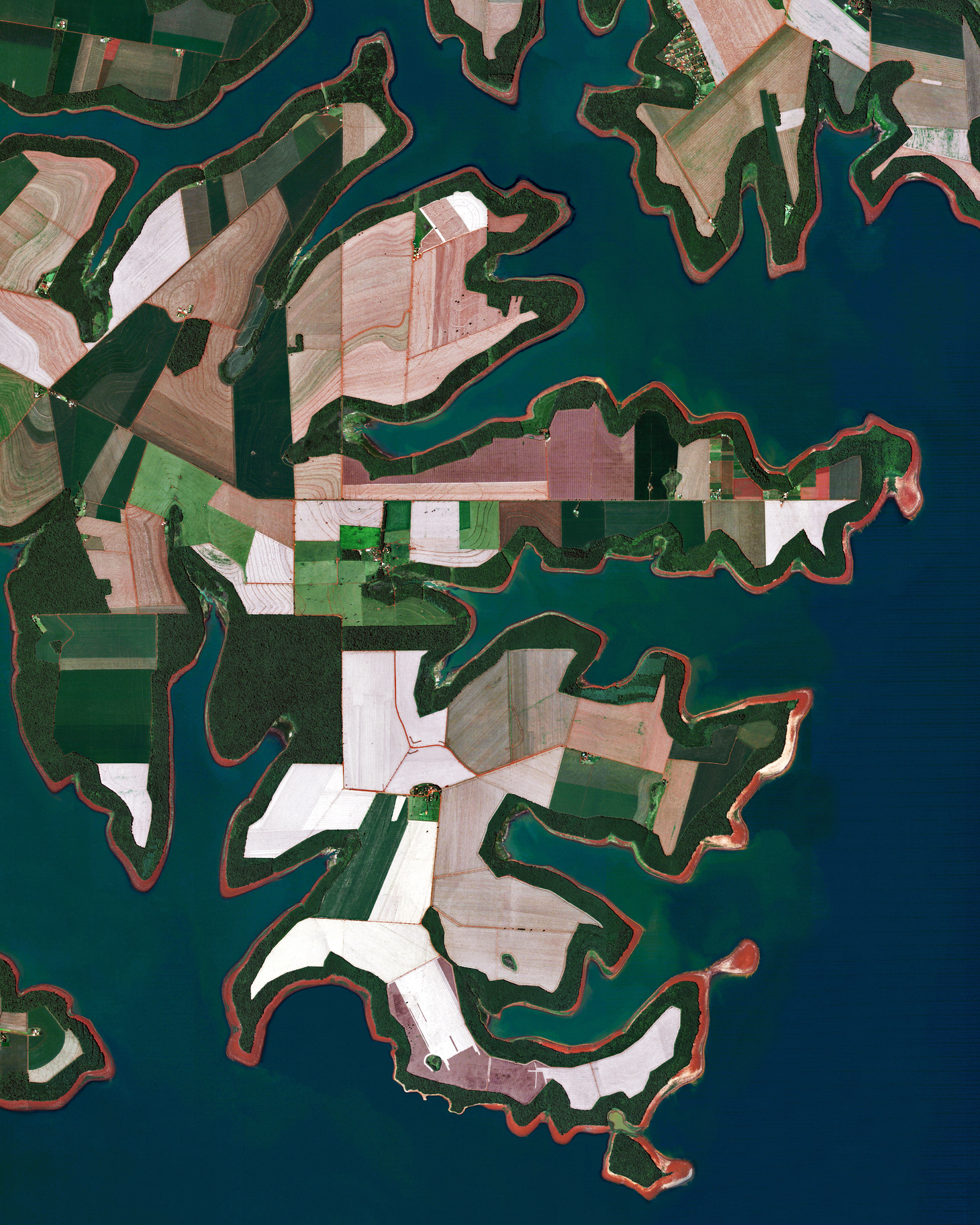 """Agricultural fields line the shores of the Itaipu Reservoir — a body of water that forms the border between Brazil and Paraguay. The area's tropical climate makes it an ideal place to grow sugarcane, coffee, tea, and cotton.  25°18'20.3""""S, 54°25'12.6""""W  Source imagery: DigitalGlobe"""