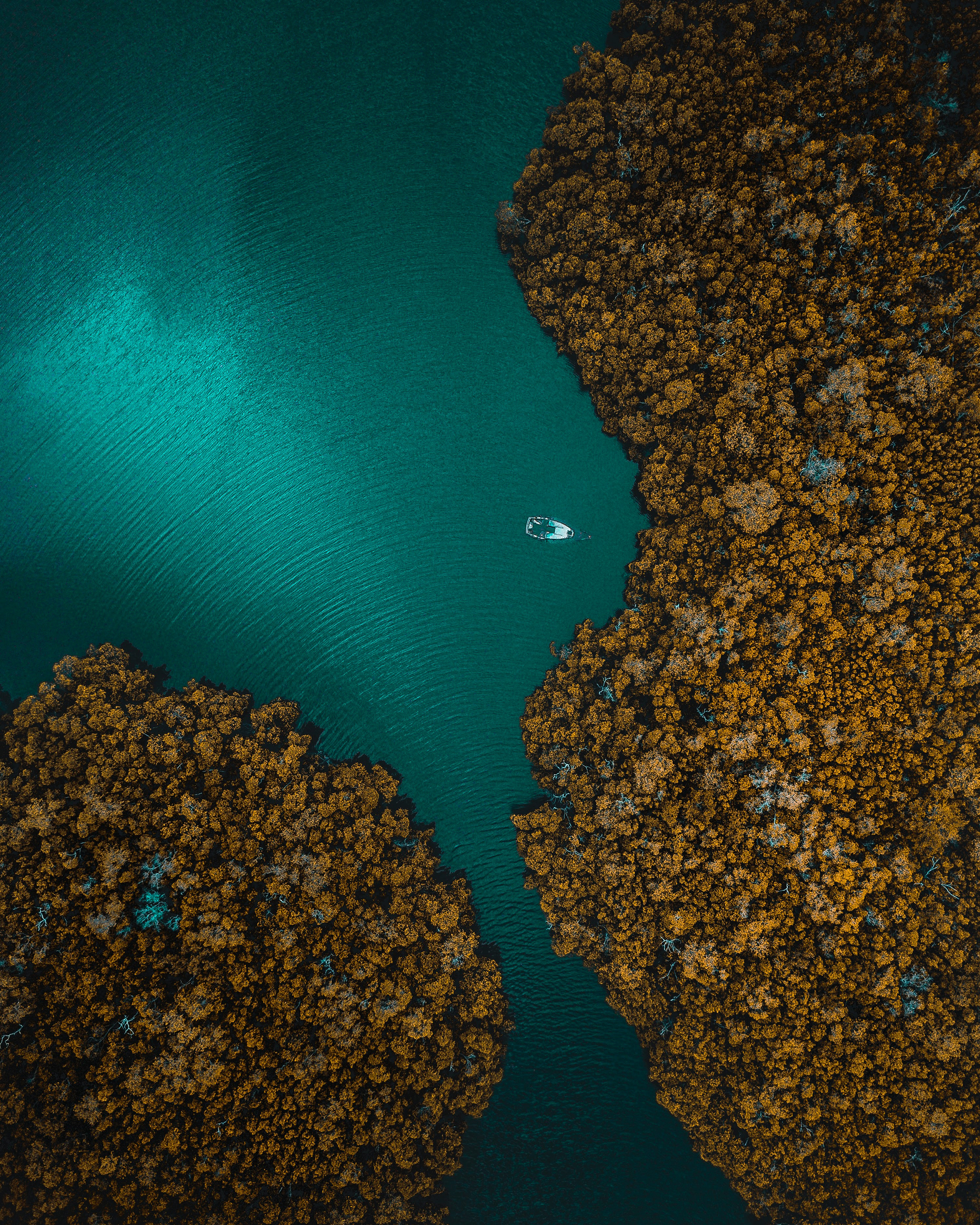 """Check out this awesome drone shot of a sunken ship in Marco Island, Florida. Located in the Gulf of Mexico, the island contains a city by the same name, which has a population of roughly 18,000 people. Marco Island is home to retired astronaut Michael Collins, the seventeenth American in space and one of just 24 people who have flown to the Moon.  25°54'57.7""""N, 81°41'32.7""""W  Source imagery: A2EOrigins"""