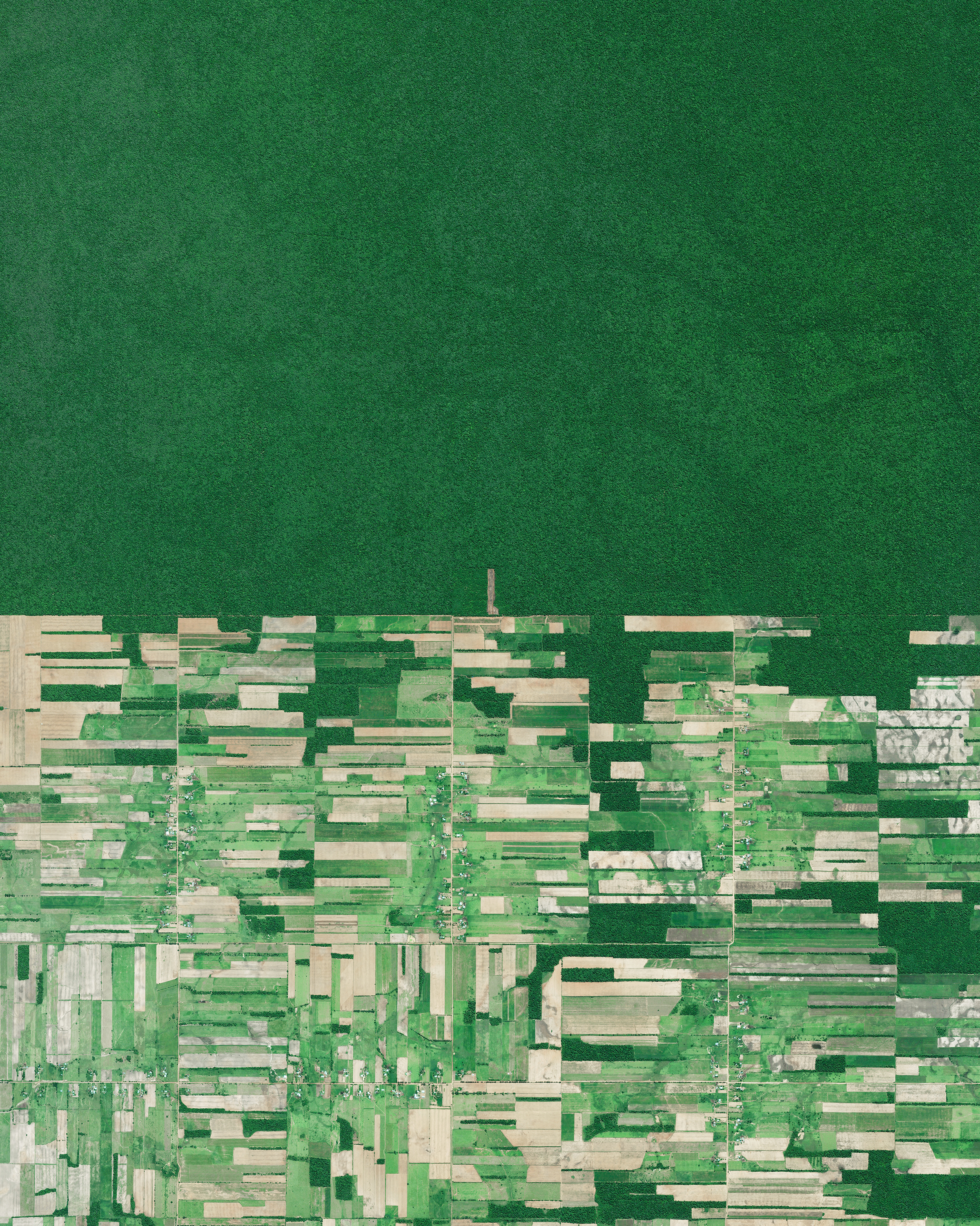 Deforestation of the rainforest is visible in Santa Cruz, Bolivia, immediately adjacent to untouched tracts of forest. Deforestation in the country has primarily been driven by the expansion of mechanized agriculture and cattle ranching. According to  The Economist , initial data for the first half of May showed 17,000 acres (6,880 hectares) of forest had been chopped down in the Amazon, nearly as much as the total for the previous nine months.  -17.387750, -60.562130  Source imagery: Maxar Technologies