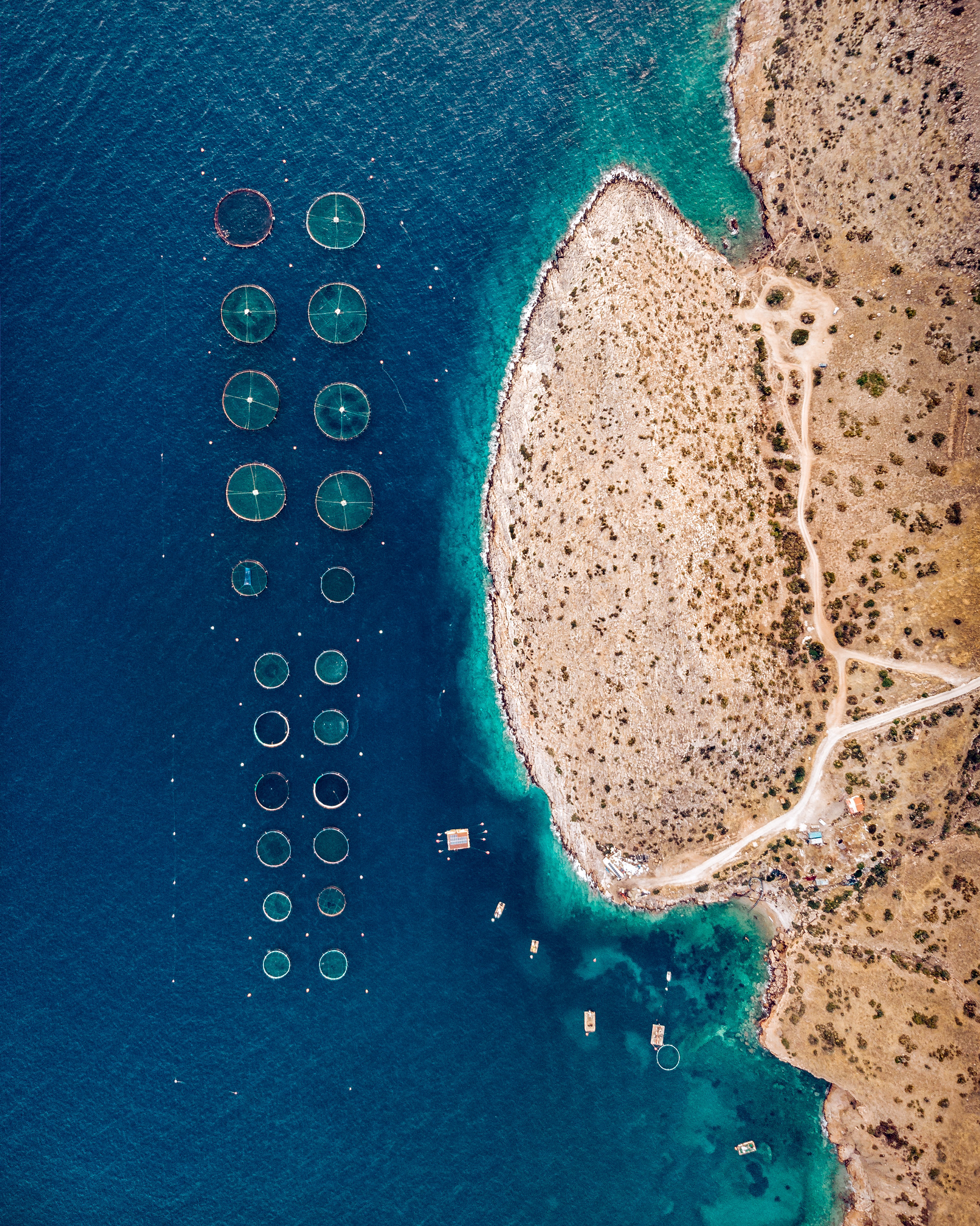 A fish farming operation is seen here in the Saronic Gulf, just offshore Greece's Attica Peninsula. Fish farming — or pisciculture — involves raising fish in tanks or enclosures, usually for food. In 2015, Greece had at least 300 of these farms and raised more than 242 million pounds (109 million kg) of fish and mussels.  37.669464°, 23.945770°  Source imagery: Zizanius
