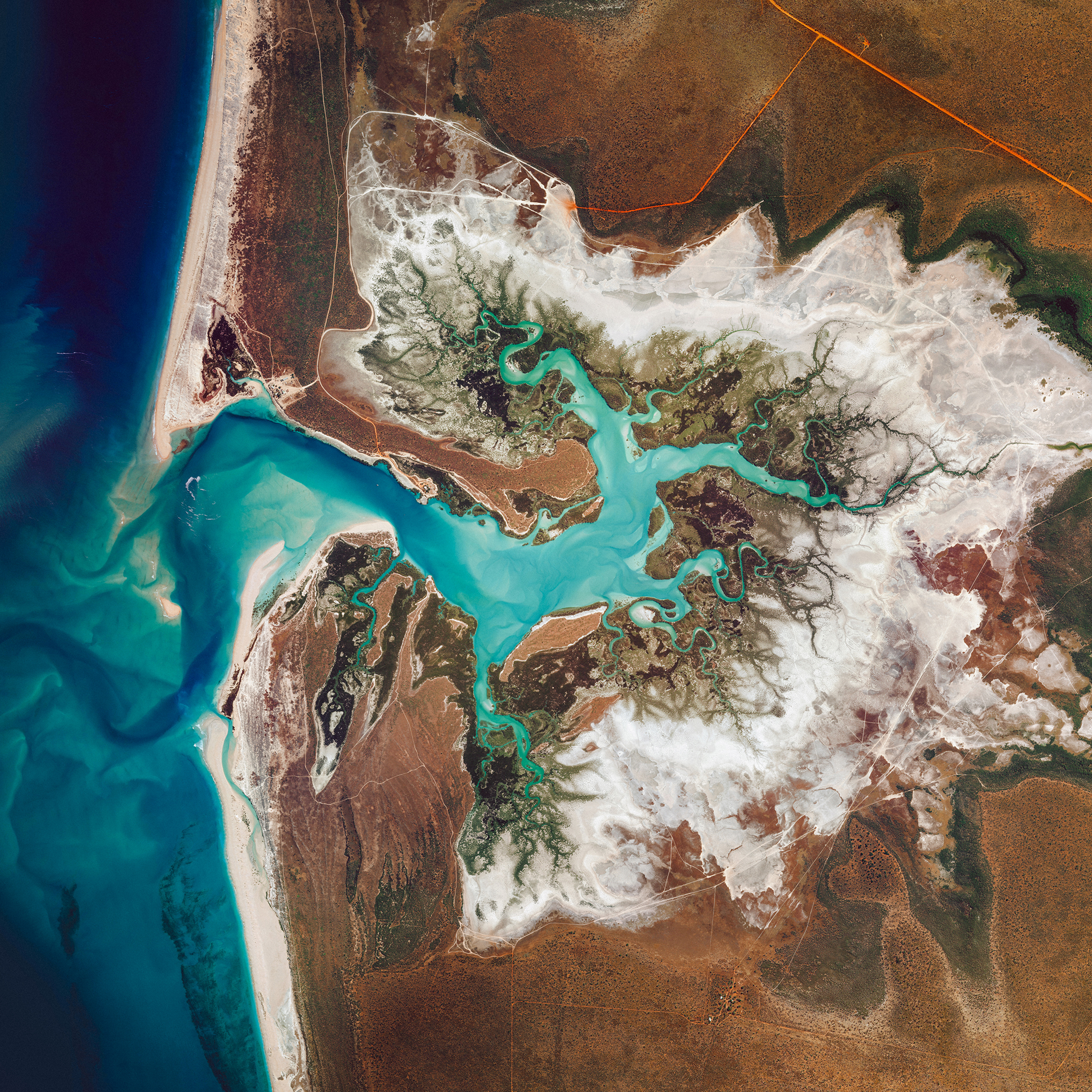 Willie Creek is a protected tidal estuary roughly 10.5 miles (17 km) north of Broome, Western Australia. The creek's calm, nutrient-rich waters make it an ideal habitat for the Pinctada maxima oyster, which produces world-renowned pearls.  -17.764682°, 122.217335°  Source imagery: Maxar Technologies