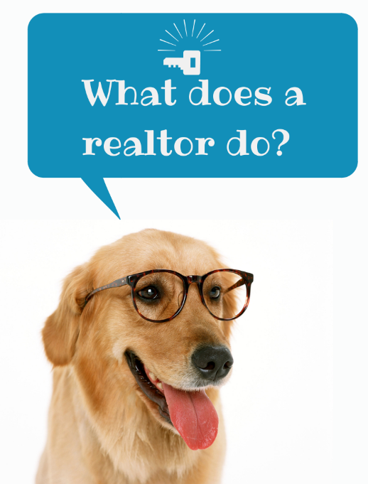 What does a realtor do-.png