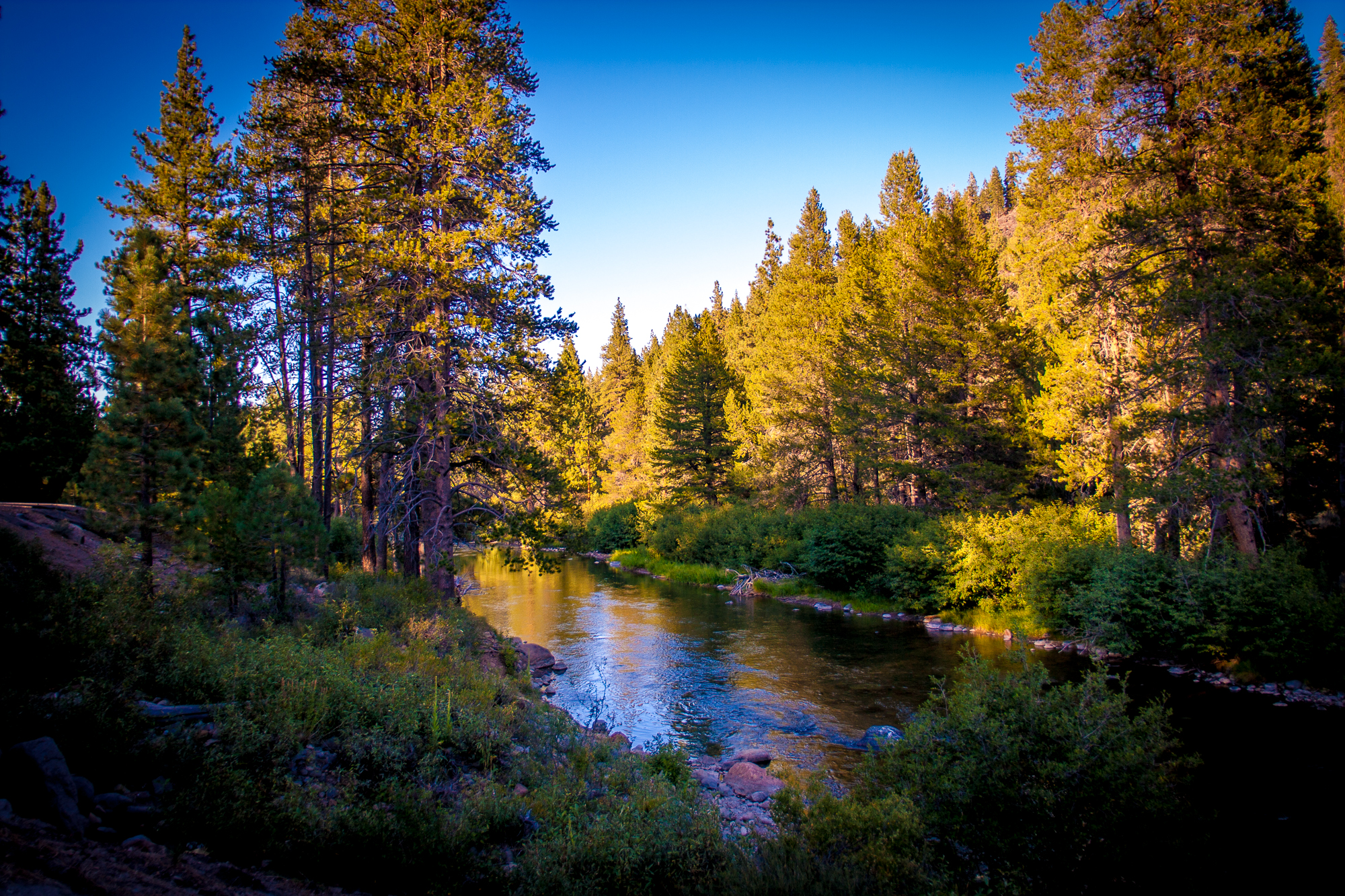 Truckee river at sunset