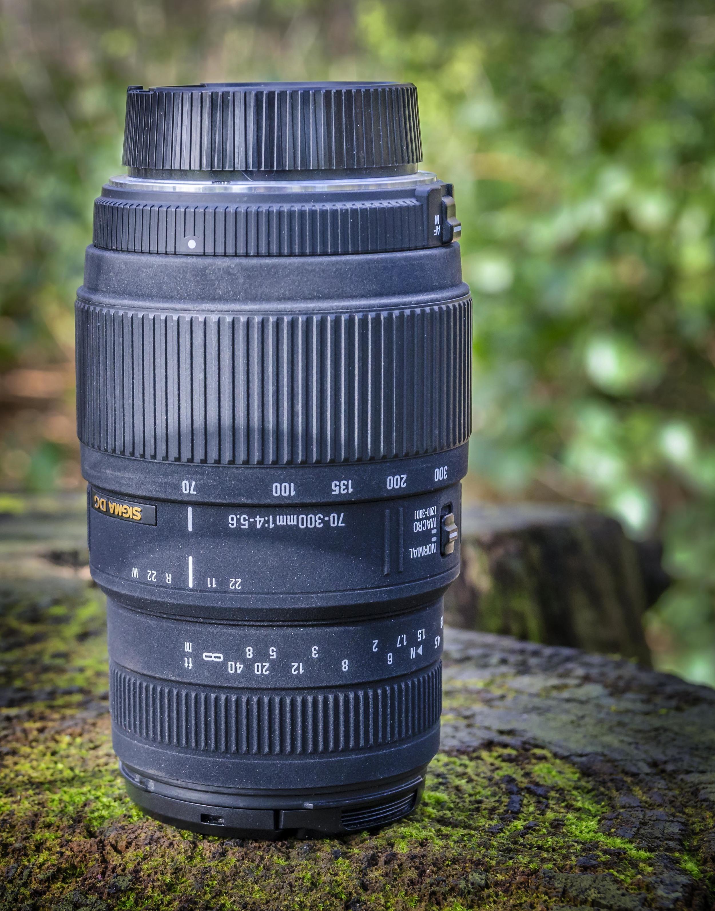 The Sigma 70- 300 mm Macro
