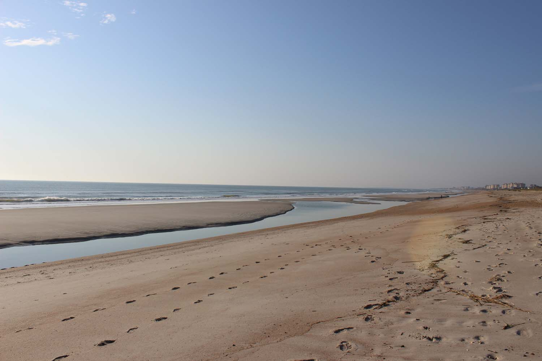 Amelia Island Beach; Image: Laura Messersmith