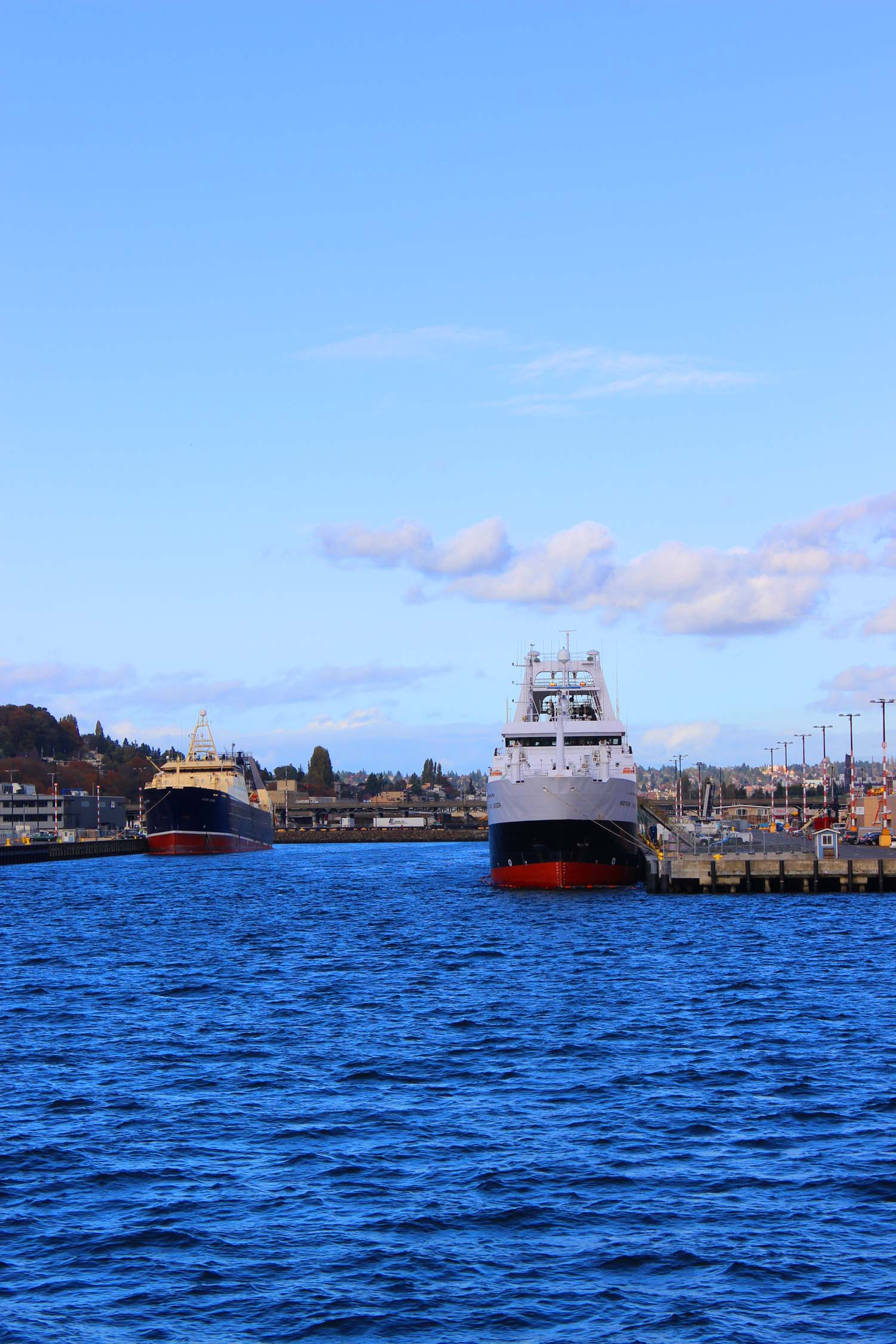 Seattle Harbor  | Image:  Laura Messersmith