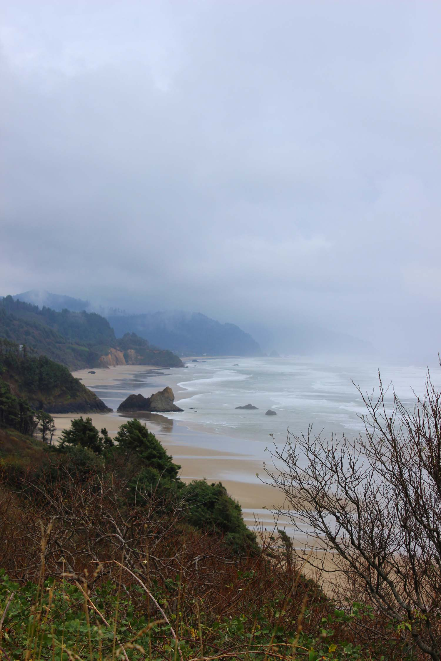 Oregon Coast    Image:  Laura Messersmith