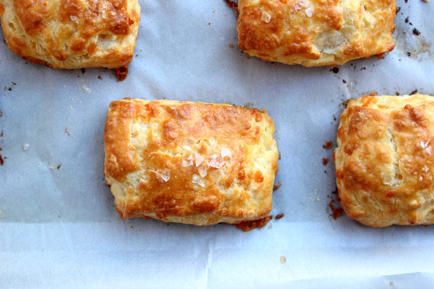 Buttermilk Cheddar Biscuits  | Image:  Laura Messersmith