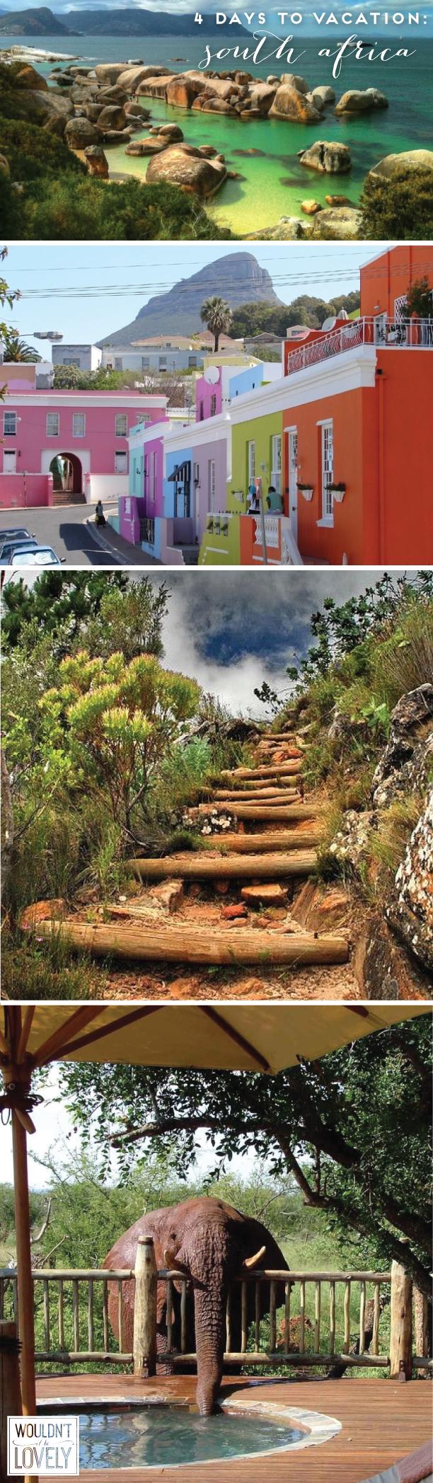 boulder beach ,  bo-kaap ,  table mountain ,  safari