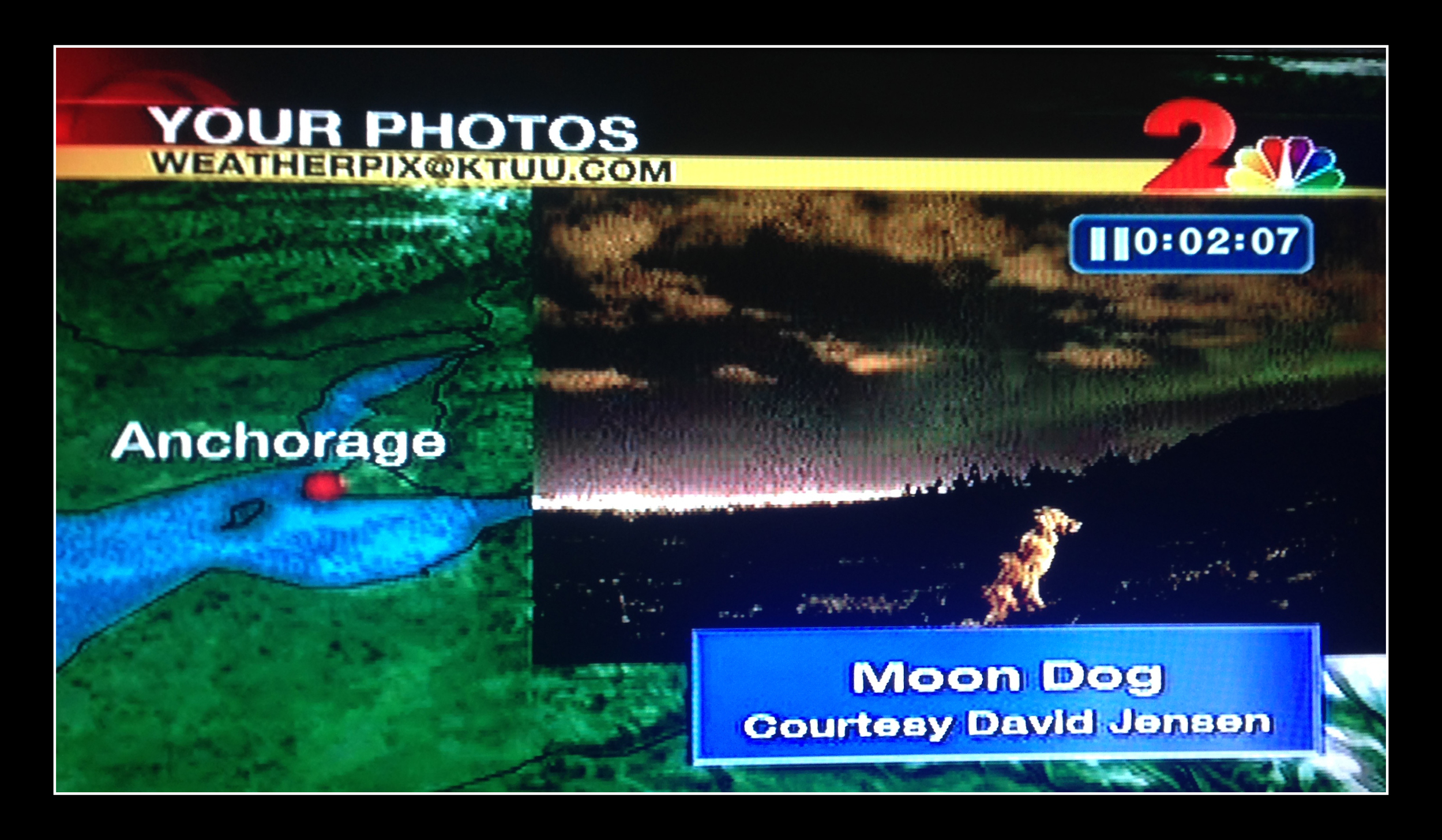This image of  Layla  received more than 1800 Likes on the  Channel 2 Weather Team's Facebook page !  November 16, 2014