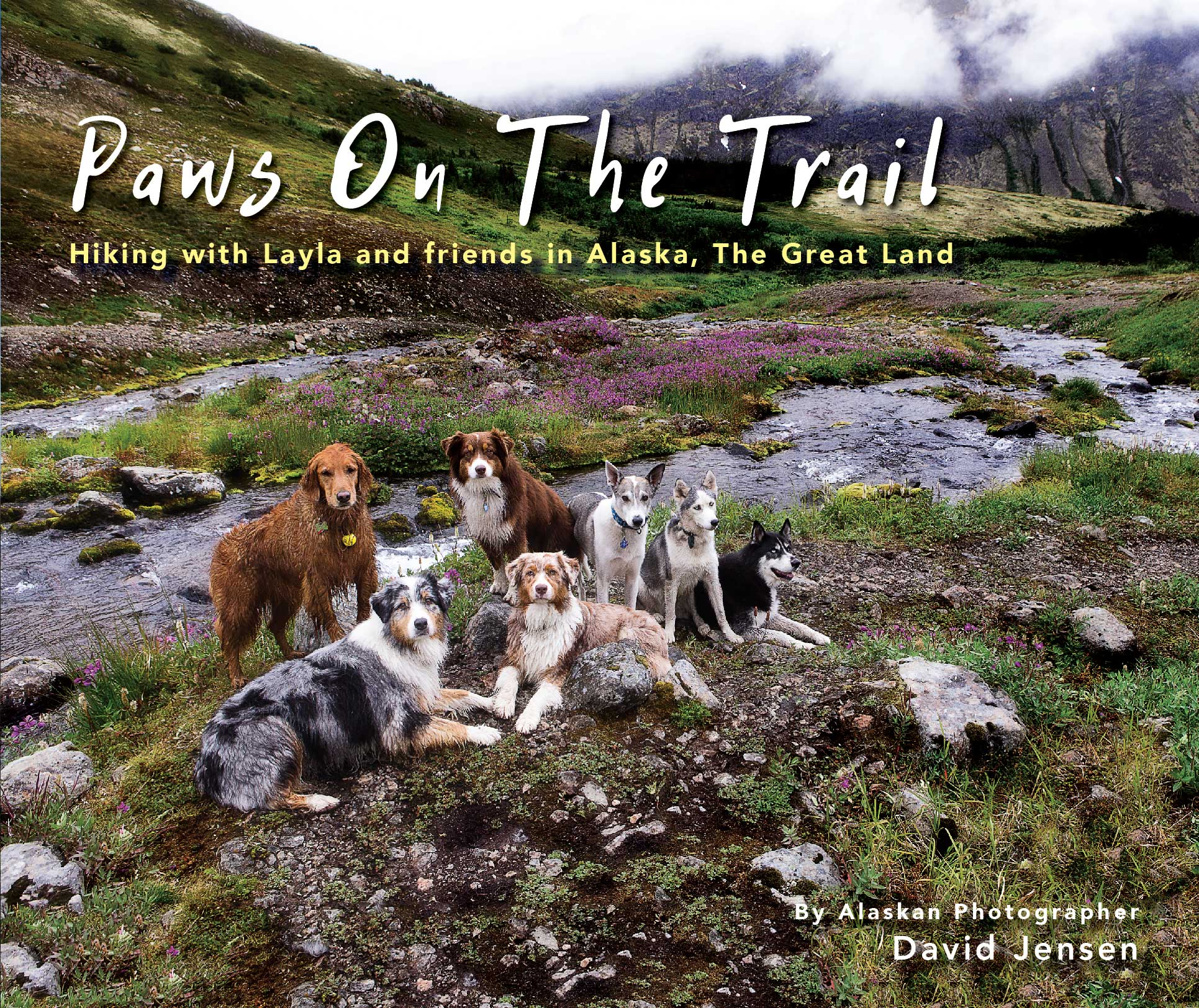 210-pages featuring nearly 400 hiking and mountaineering dogs in Alaska's beautiful Chugach Mountain Range.