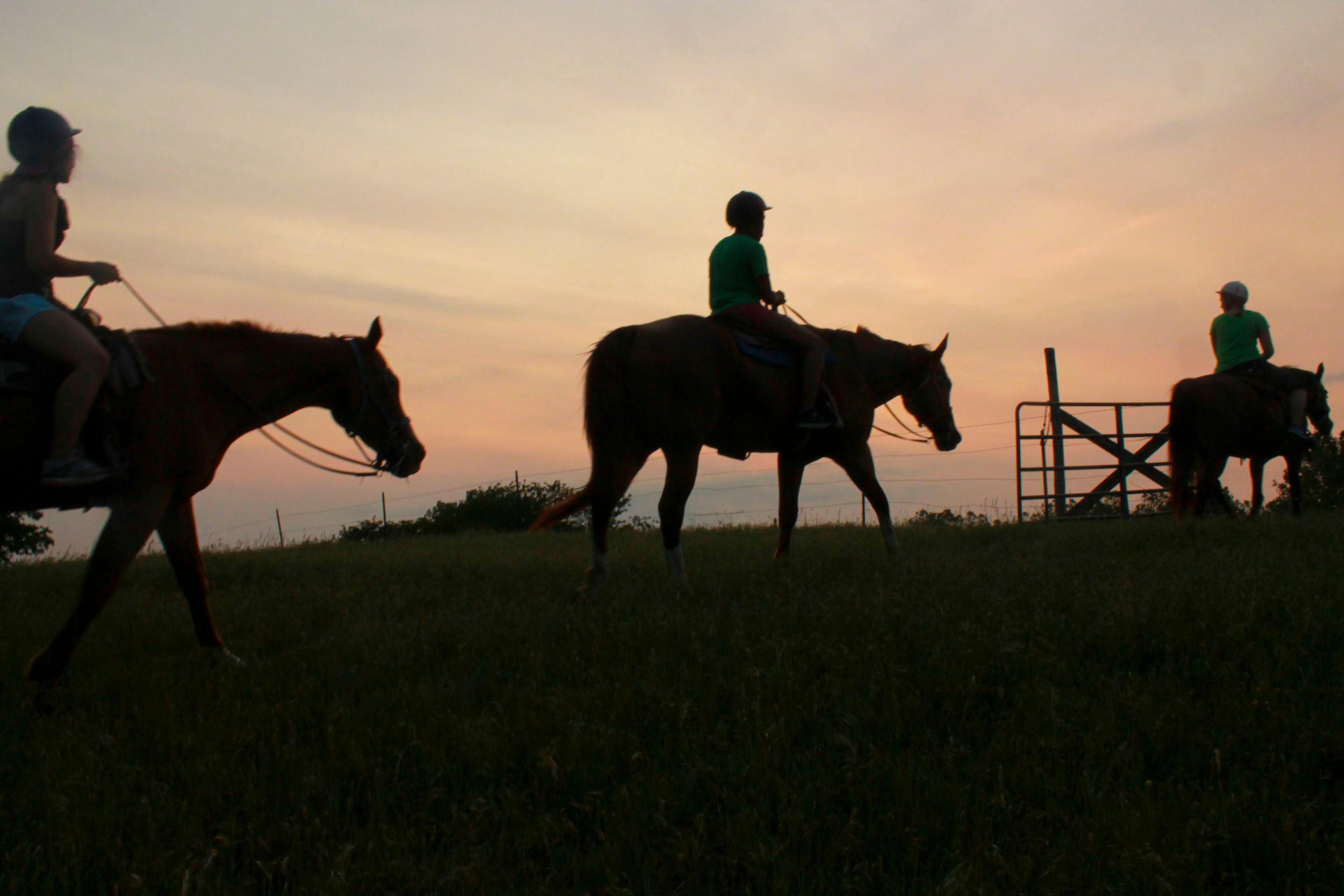 horsesslideshowretreat1.jpg