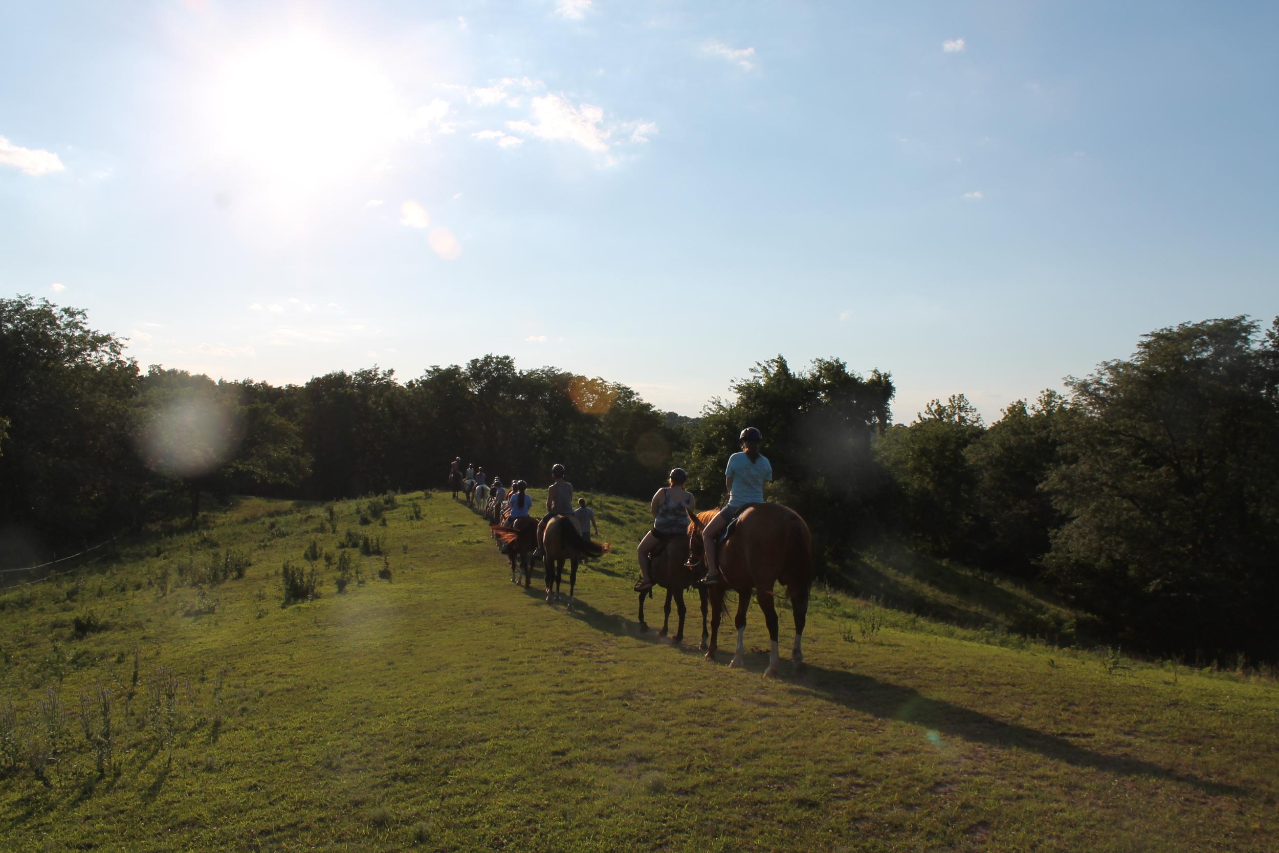 horsesretreatwebsite.jpg