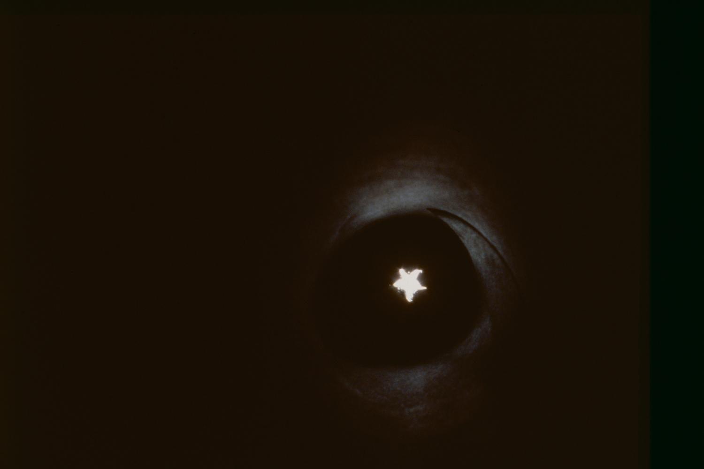starlight-horn-huebner-closeup-3.jpg