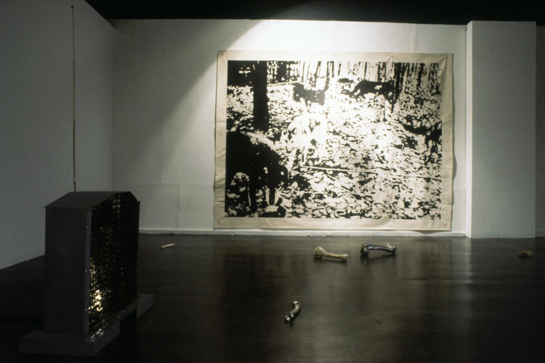 bones-wolves-vancouver-installation-huebner-5.jpg