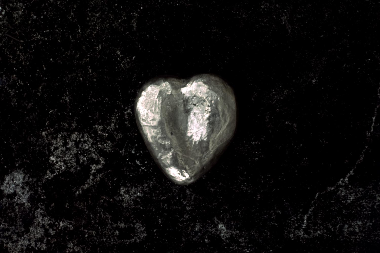 palm-heart-greyhound-series-huebner-2.jpg