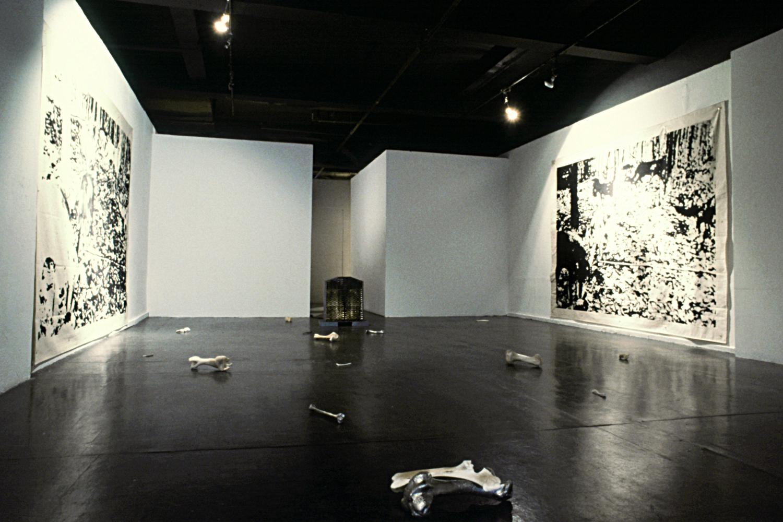 Installation - Contemporary Art Gallery, Vancouver Canada